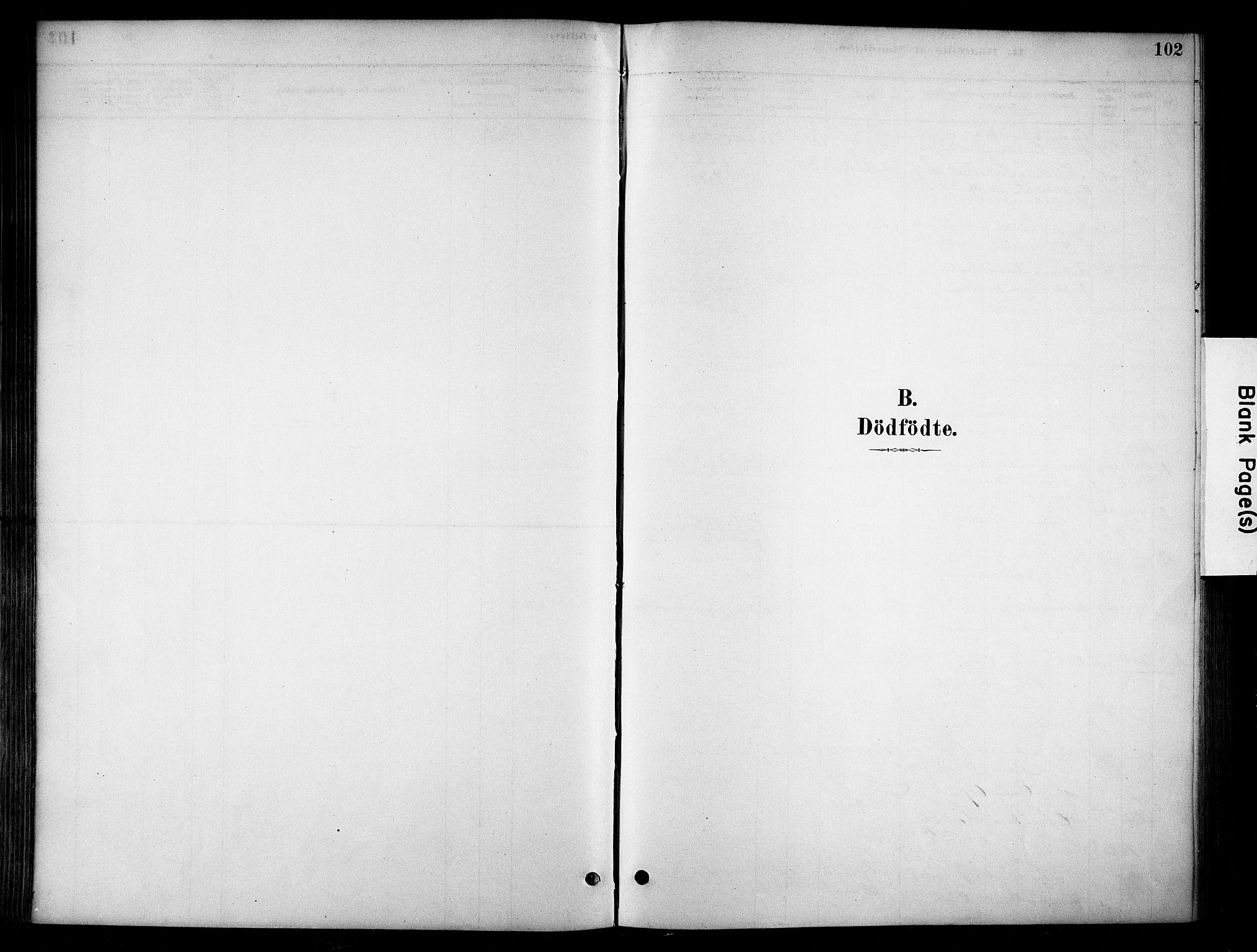 SAH, Stange prestekontor, K/L0018: Parish register (official) no. 18, 1880-1896, p. 102