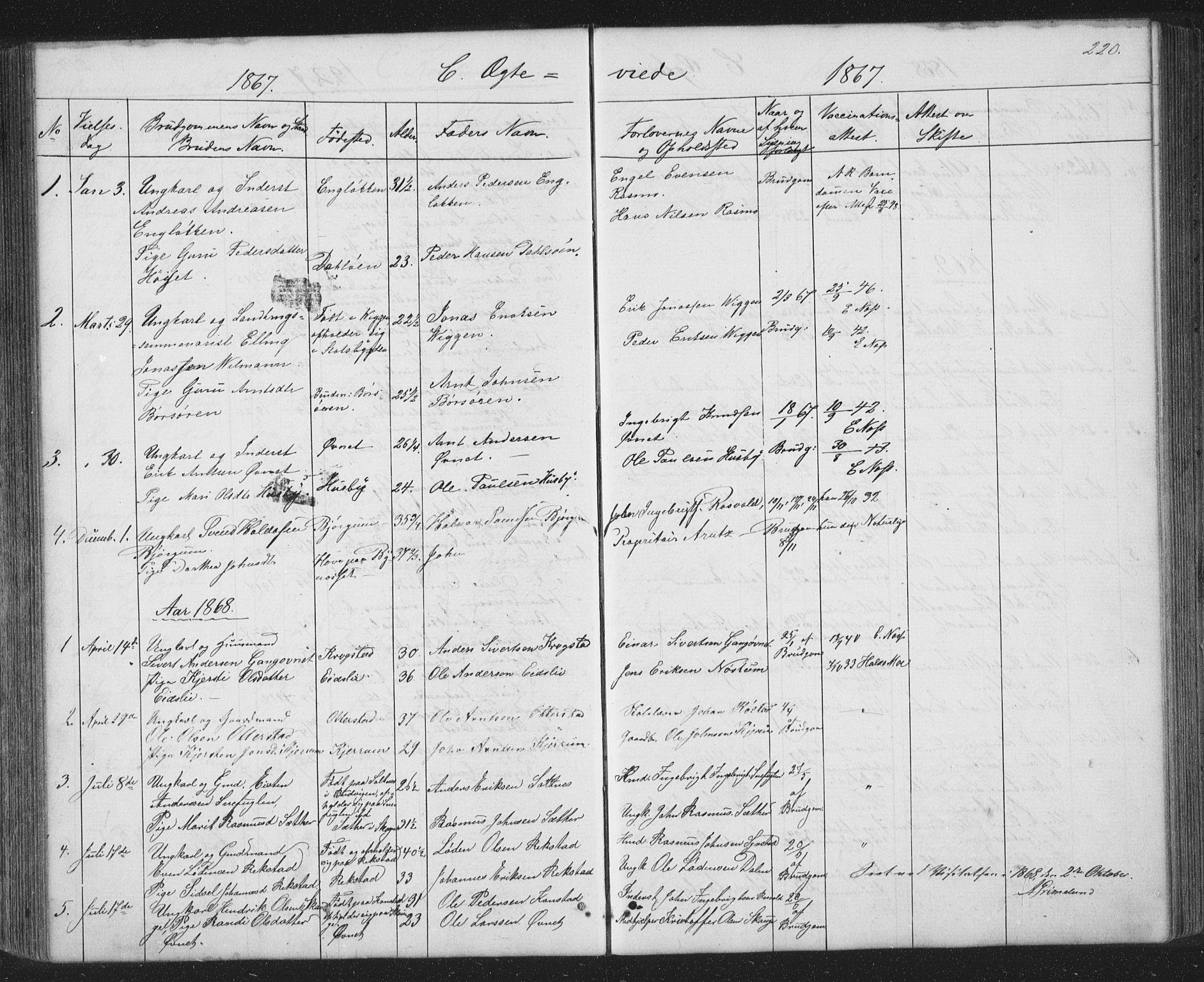 SAT, Ministerialprotokoller, klokkerbøker og fødselsregistre - Sør-Trøndelag, 667/L0798: Parish register (copy) no. 667C03, 1867-1929, p. 220
