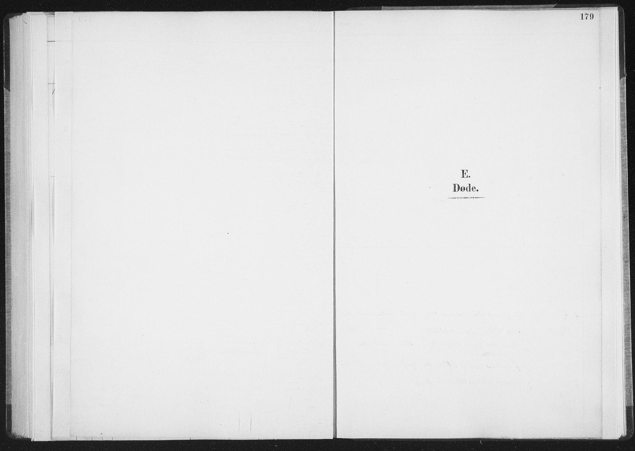 SAT, Ministerialprotokoller, klokkerbøker og fødselsregistre - Nordland, 898/L1422: Parish register (official) no. 898A02, 1887-1908, p. 179