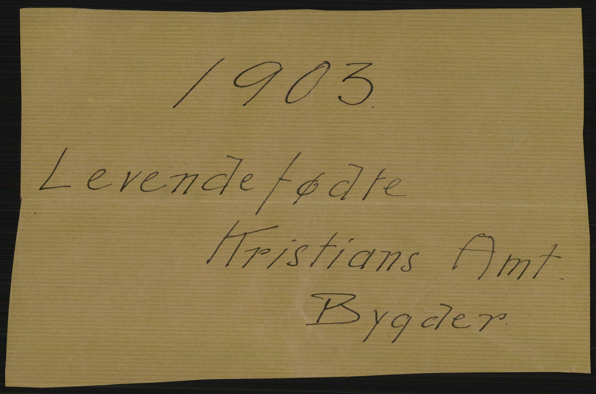 RA, Statistisk sentralbyrå, Sosiodemografiske emner, Befolkning, D/Df/Dfa/Dfaa/L0006: Kristians amt: Fødte, gifte, døde, 1903, p. 1