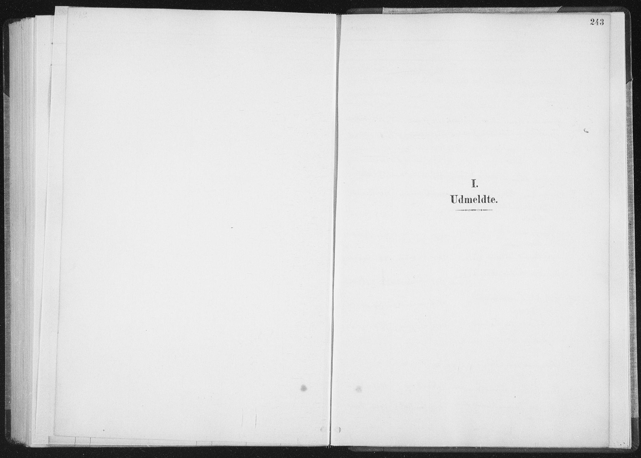 SAT, Ministerialprotokoller, klokkerbøker og fødselsregistre - Nordland, 898/L1422: Parish register (official) no. 898A02, 1887-1908, p. 243