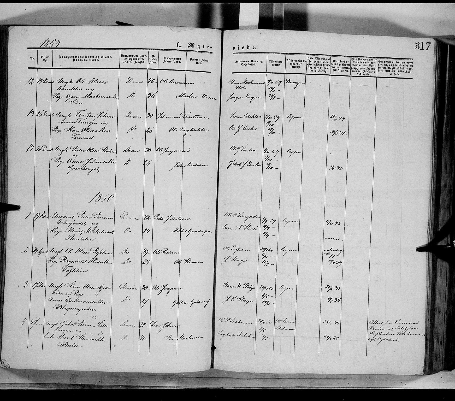 SAH, Dovre prestekontor, Parish register (official) no. 1, 1854-1878, p. 317