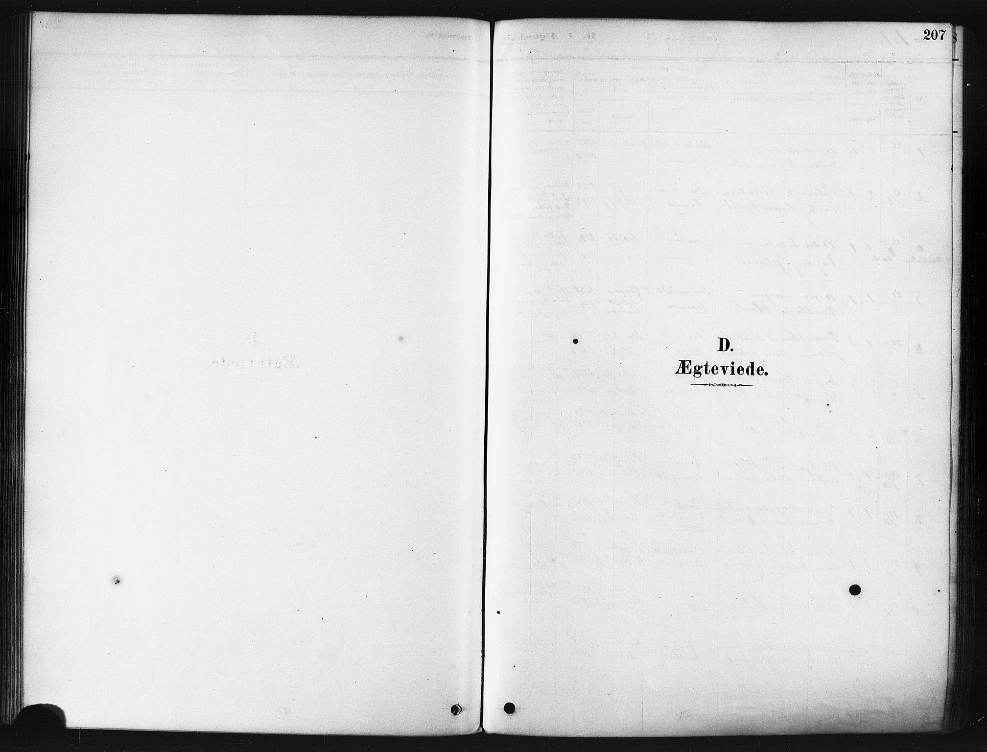 SATØ, Tranøy sokneprestkontor, I/Ia/Iaa/L0009kirke: Parish register (official) no. 9, 1878-1904, p. 207