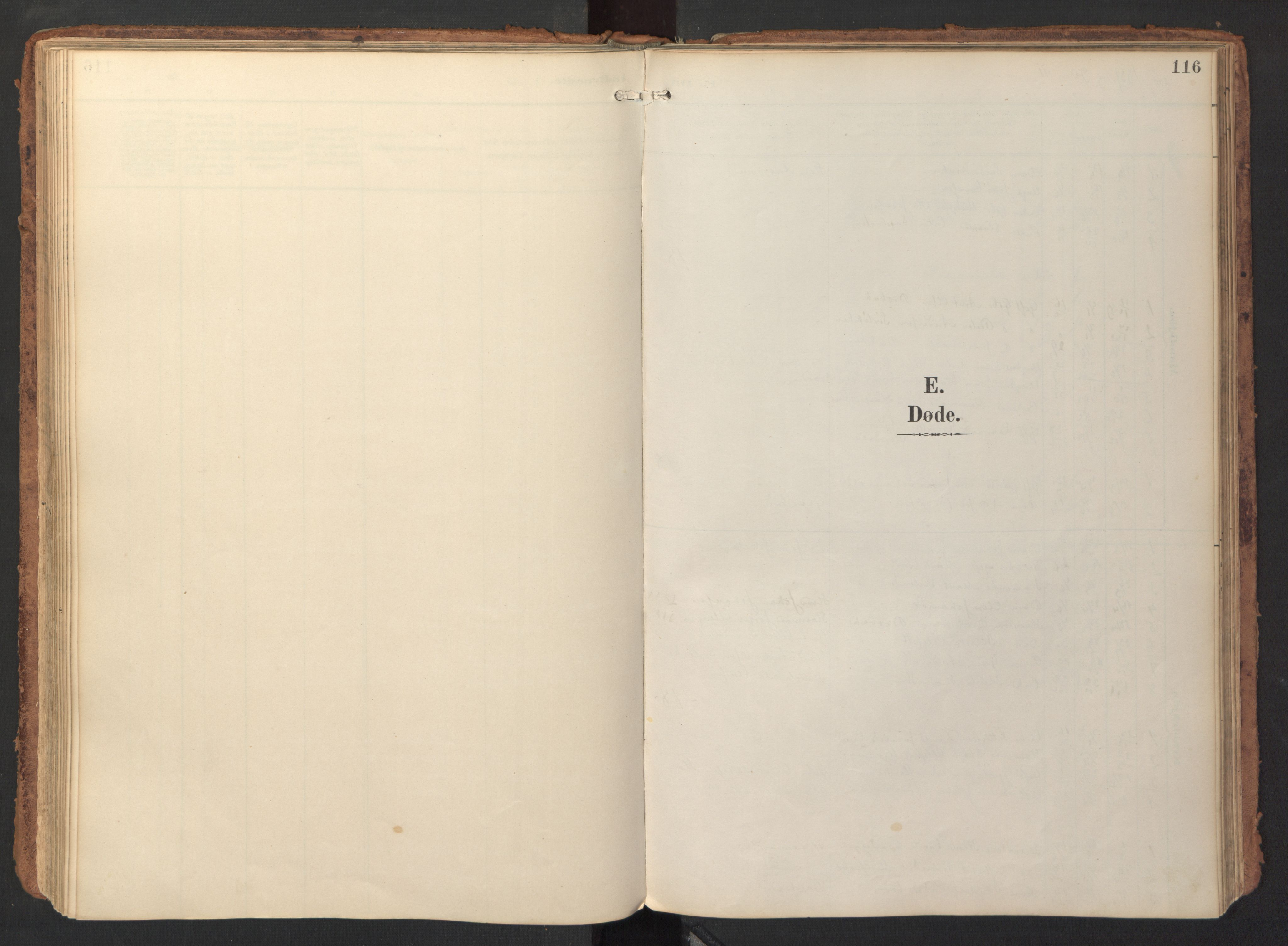 SAT, Ministerialprotokoller, klokkerbøker og fødselsregistre - Sør-Trøndelag, 690/L1050: Parish register (official) no. 690A01, 1889-1929, p. 116