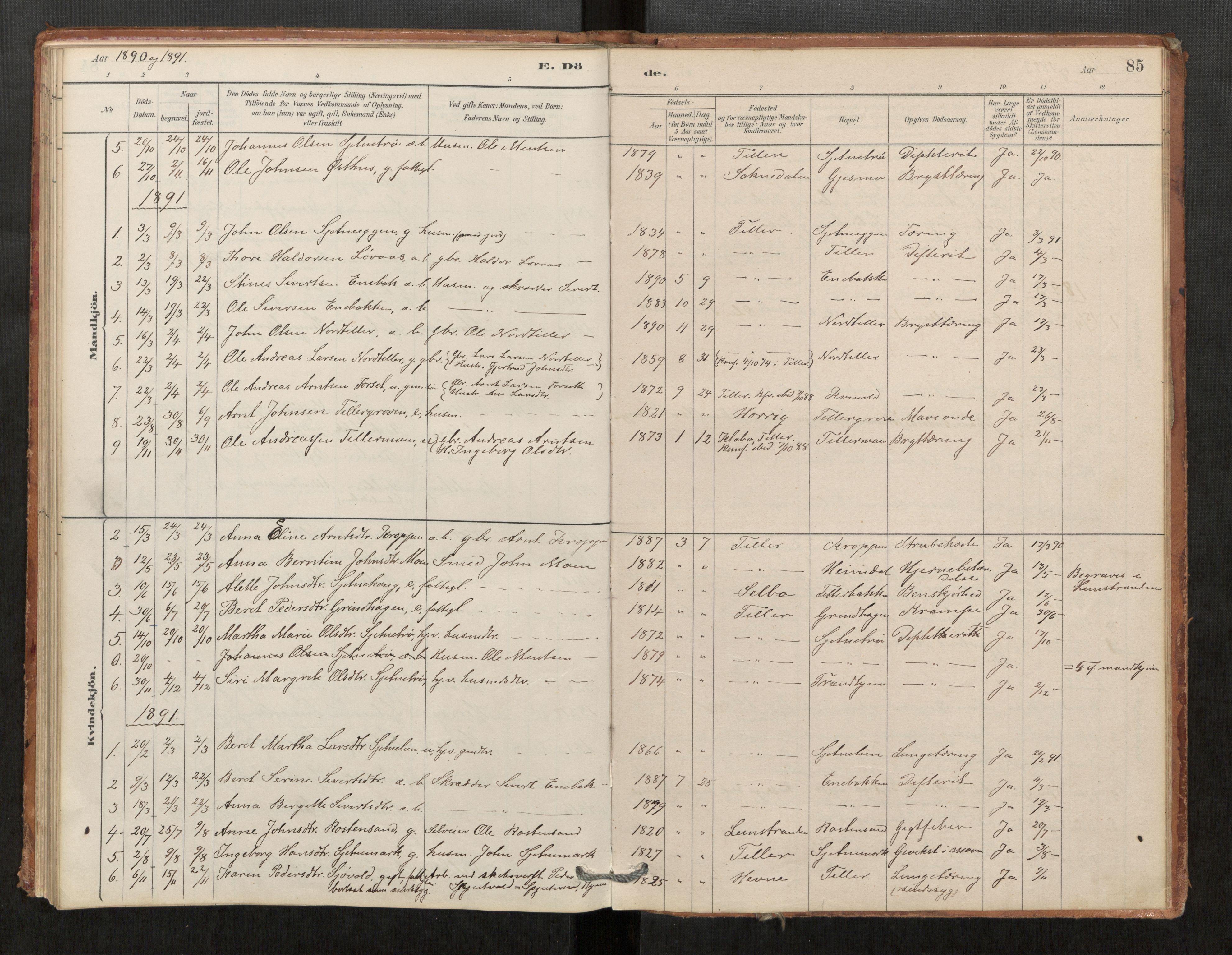 SAT, Klæbu sokneprestkontor, Parish register (official) no. 1, 1880-1900, p. 85