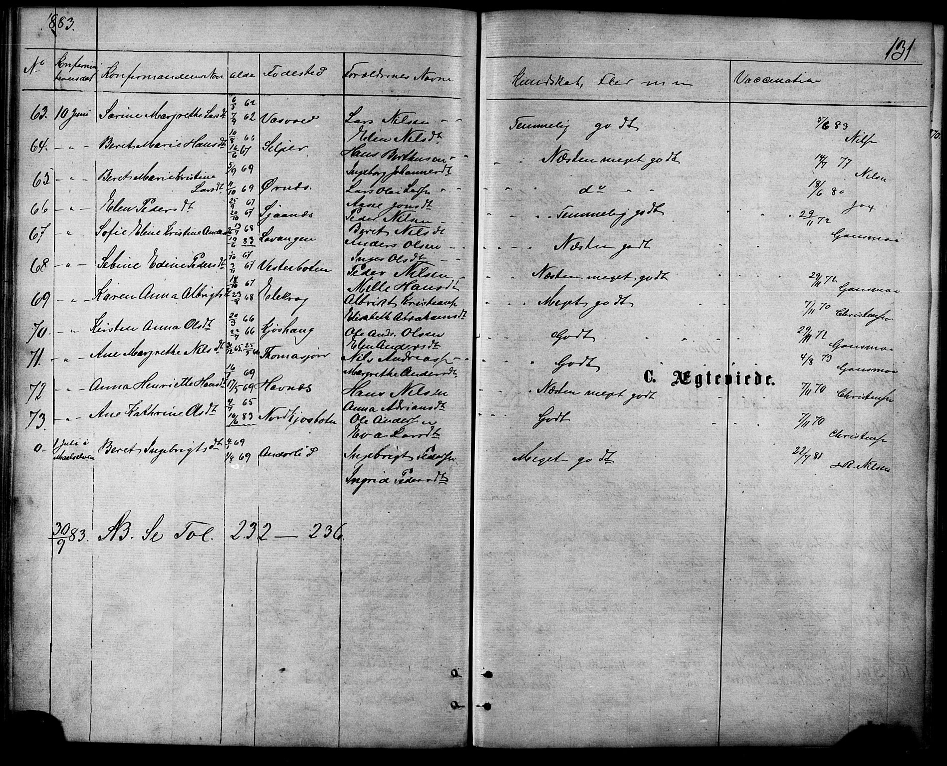 SATØ, Balsfjord sokneprestembete, Parish register (official) no. 4, 1871-1883, p. 131