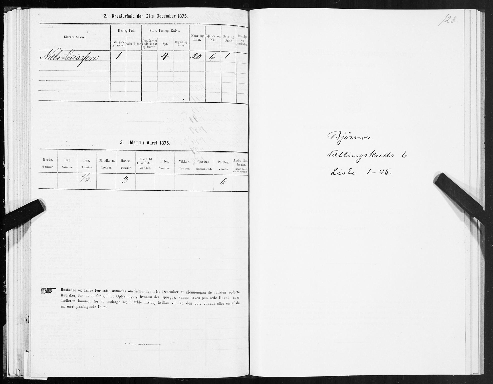 SAT, 1875 census for 1632P Bjørnør, 1875, p. 3123