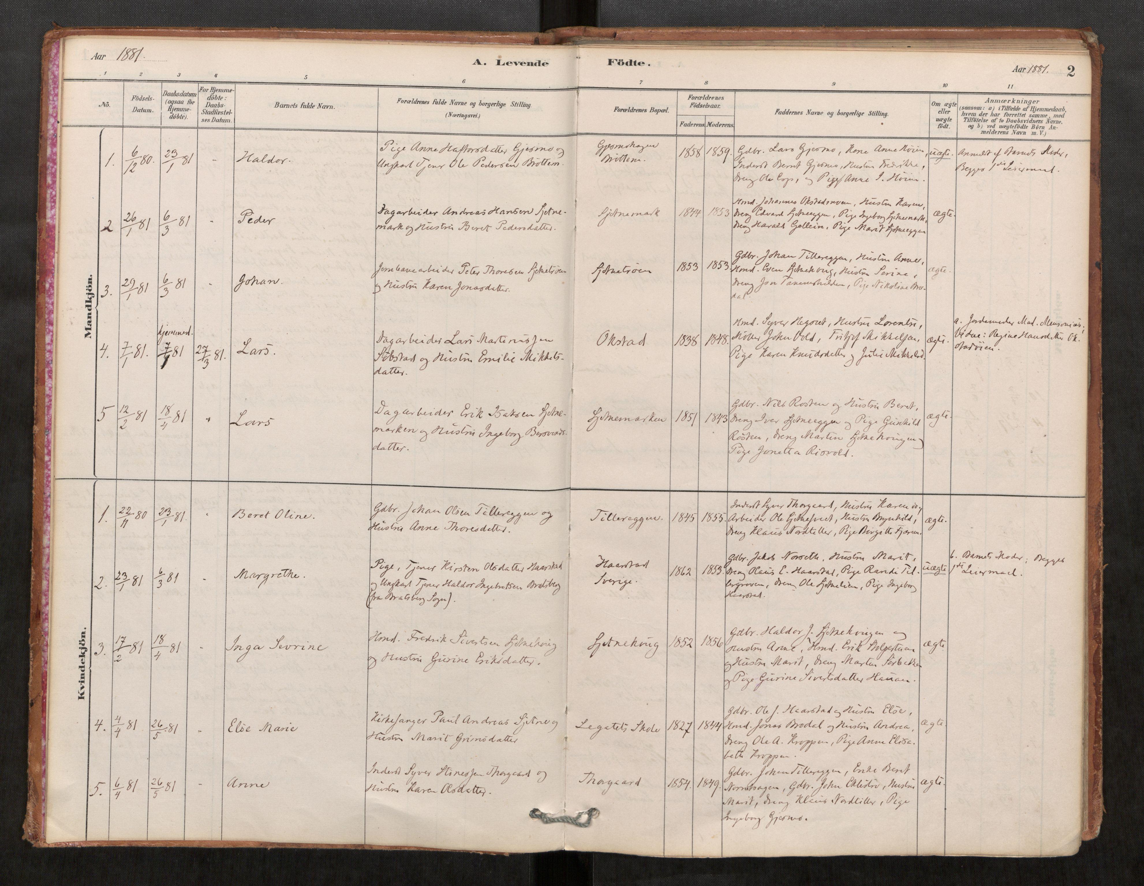 SAT, Klæbu sokneprestkontor, Parish register (official) no. 1, 1880-1900, p. 2