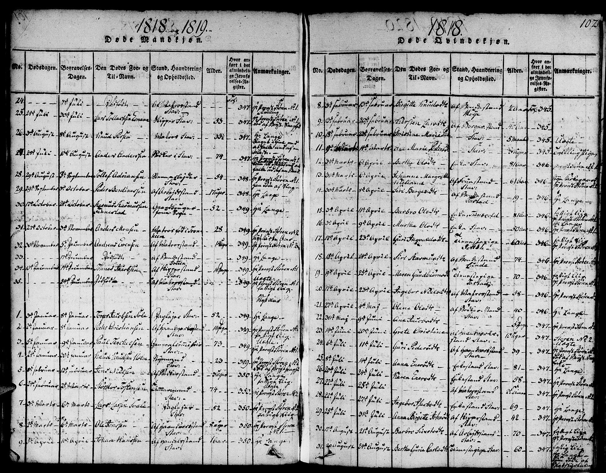 SAST, Domkirken sokneprestkontor, 30/30BA/L0008: Parish register (official) no. A 8, 1816-1821, p. 102