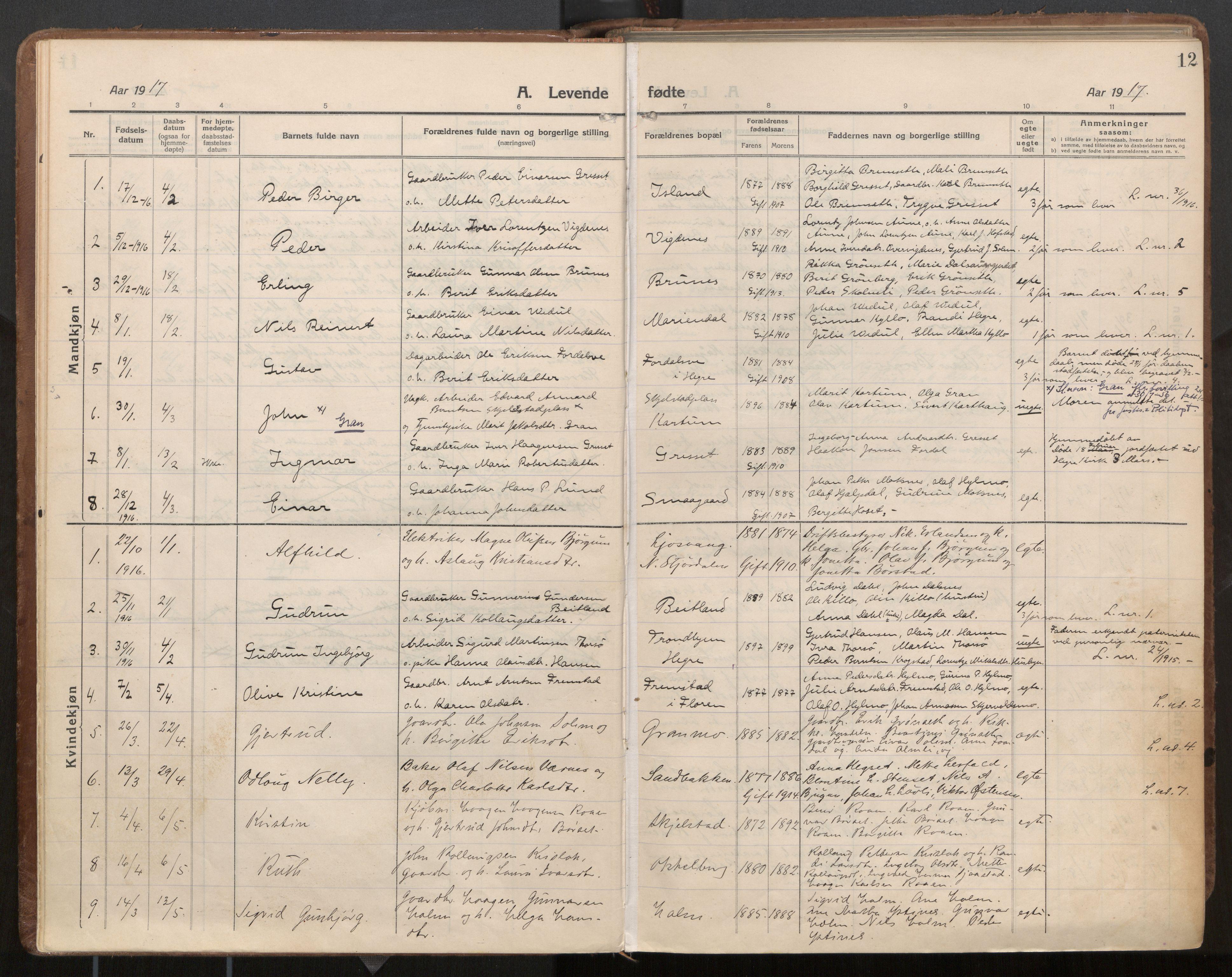 SAT, Ministerialprotokoller, klokkerbøker og fødselsregistre - Nord-Trøndelag, 703/L0037: Parish register (official) no. 703A10, 1915-1932, p. 12