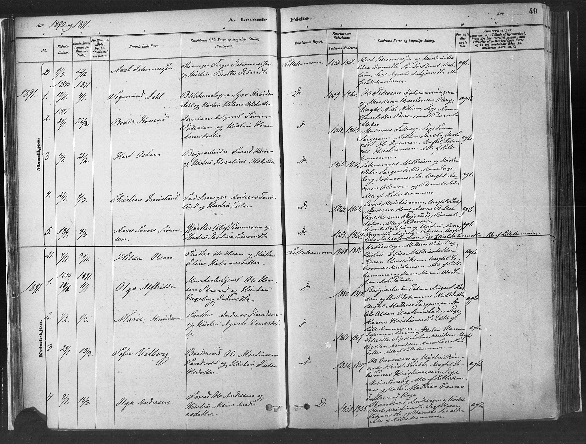 SAH, Fåberg prestekontor, H/Ha/Haa/L0010: Parish register (official) no. 10, 1879-1900, p. 49
