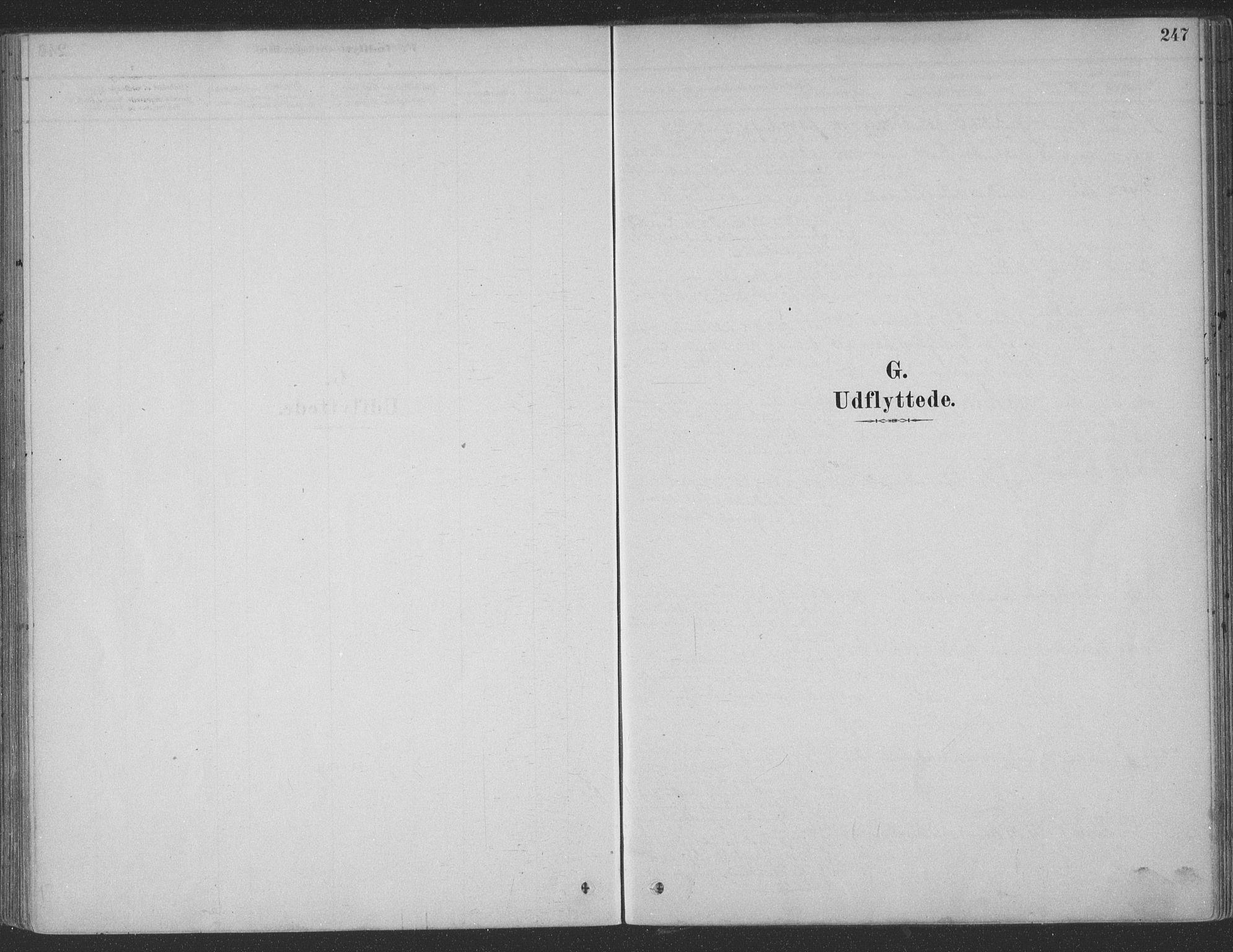 SAT, Ministerialprotokoller, klokkerbøker og fødselsregistre - Møre og Romsdal, 547/L0604: Parish register (official) no. 547A06, 1878-1906, p. 247