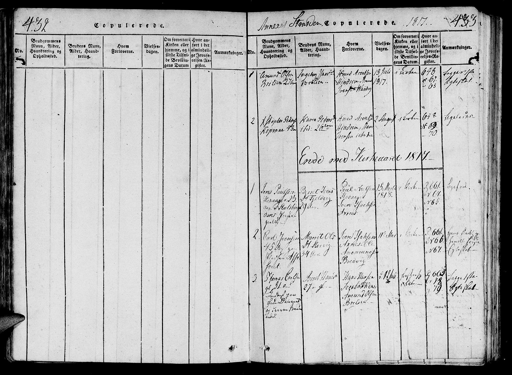SAT, Ministerialprotokoller, klokkerbøker og fødselsregistre - Nord-Trøndelag, 701/L0005: Parish register (official) no. 701A05 /2, 1816-1825, p. 432-433