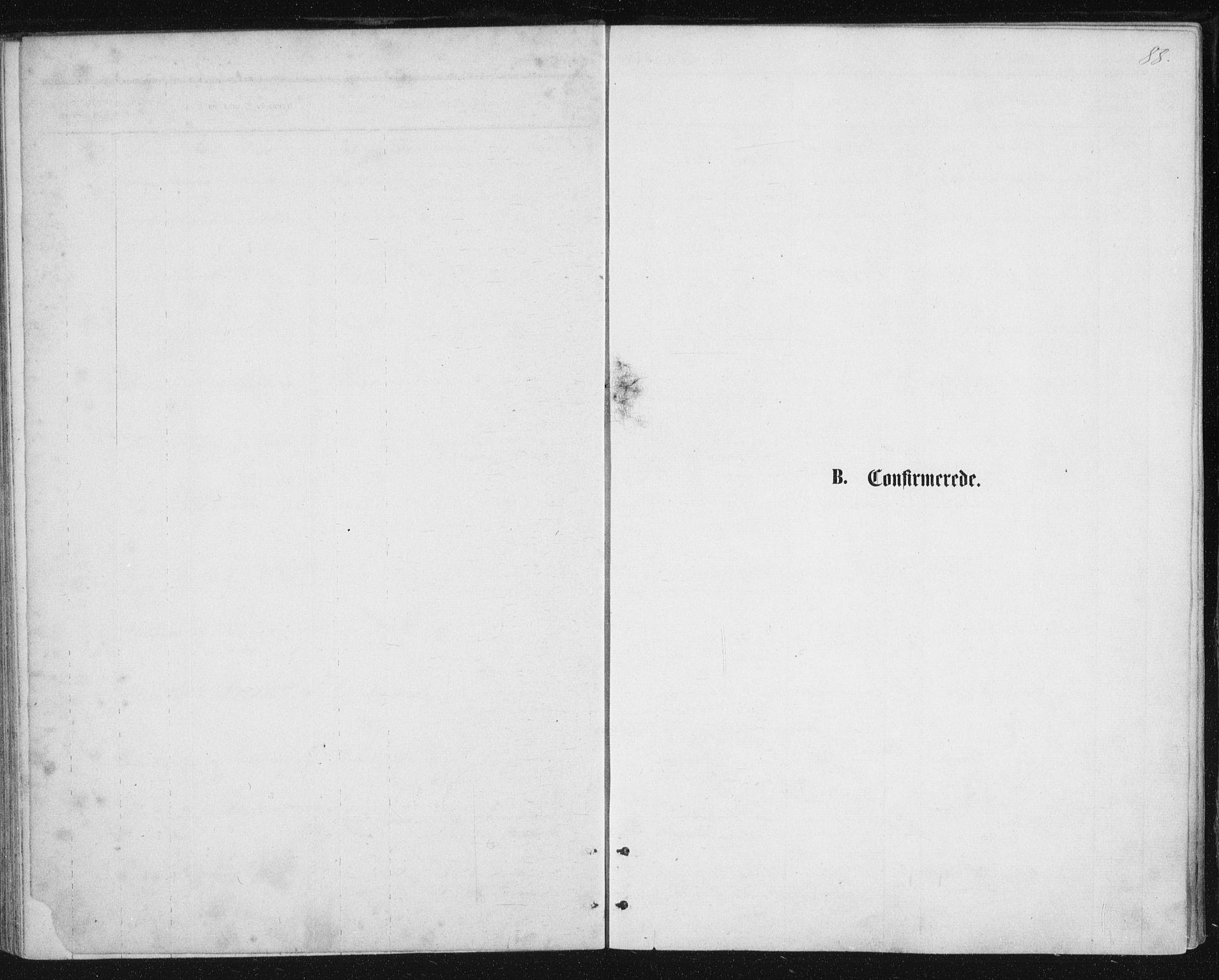 SAT, Ministerialprotokoller, klokkerbøker og fødselsregistre - Nordland, 888/L1243: Parish register (official) no. 888A09, 1876-1879, p. 88