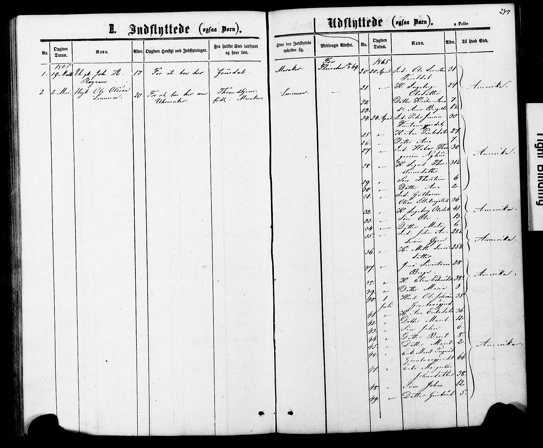SAT, Ministerialprotokoller, klokkerbøker og fødselsregistre - Nord-Trøndelag, 706/L0049: Parish register (copy) no. 706C01, 1864-1895, p. 247