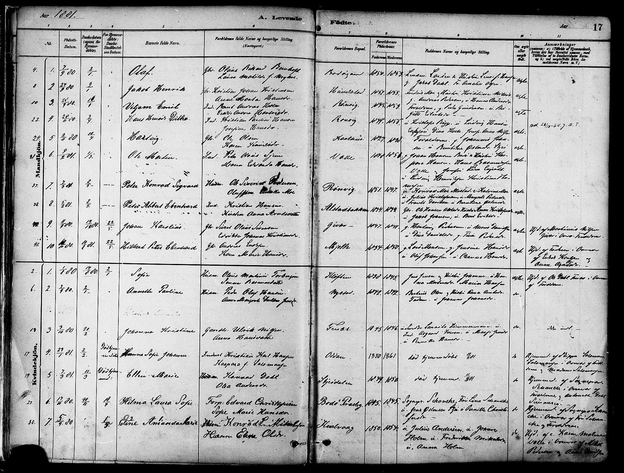 SAT, Ministerialprotokoller, klokkerbøker og fødselsregistre - Nordland, 802/L0054: Parish register (official) no. 802A01, 1879-1893, p. 17