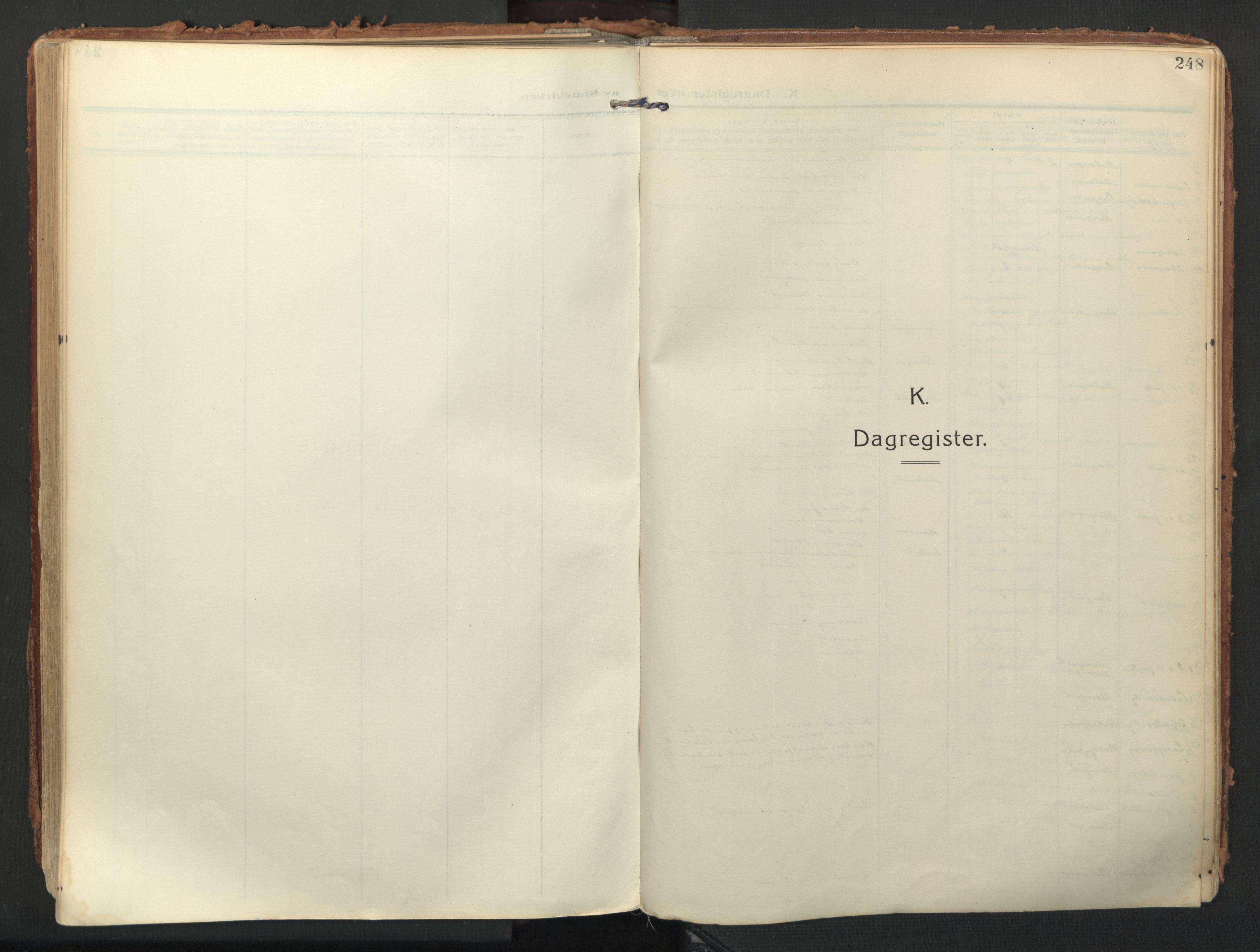 SATØ, Balsfjord sokneprestembete, Parish register (official) no. 9, 1909-1921, p. 248