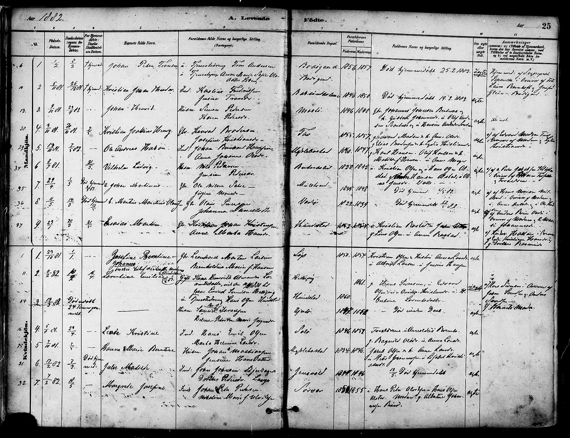 SAT, Ministerialprotokoller, klokkerbøker og fødselsregistre - Nordland, 802/L0054: Parish register (official) no. 802A01, 1879-1893, p. 25