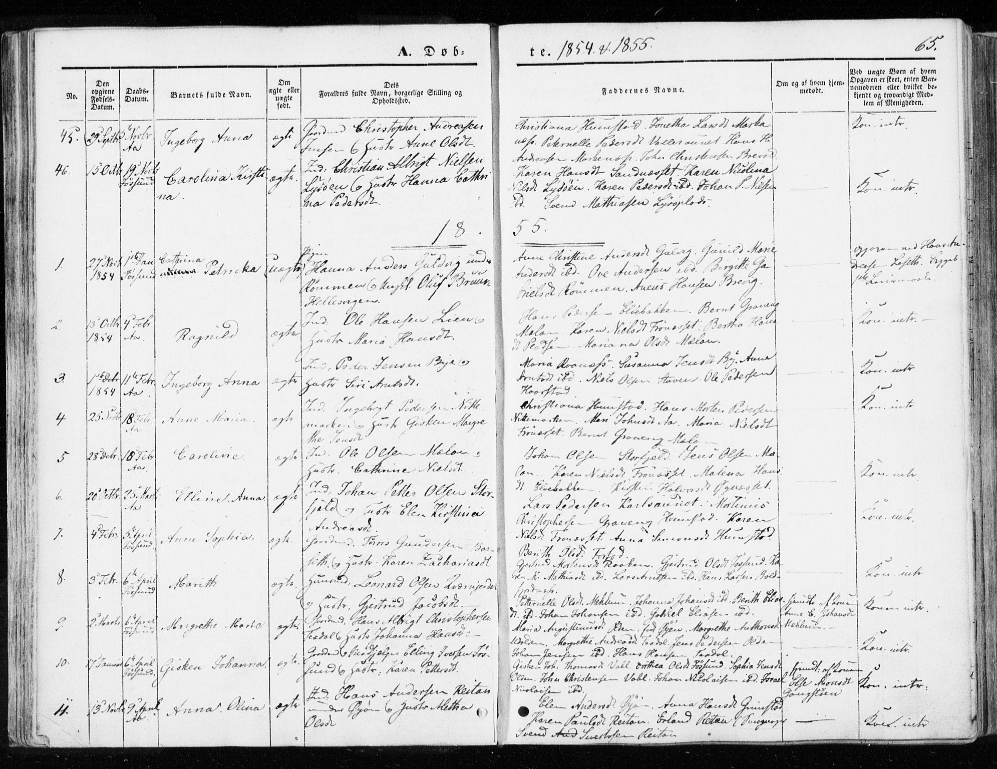 SAT, Ministerialprotokoller, klokkerbøker og fødselsregistre - Sør-Trøndelag, 655/L0677: Parish register (official) no. 655A06, 1847-1860, p. 65