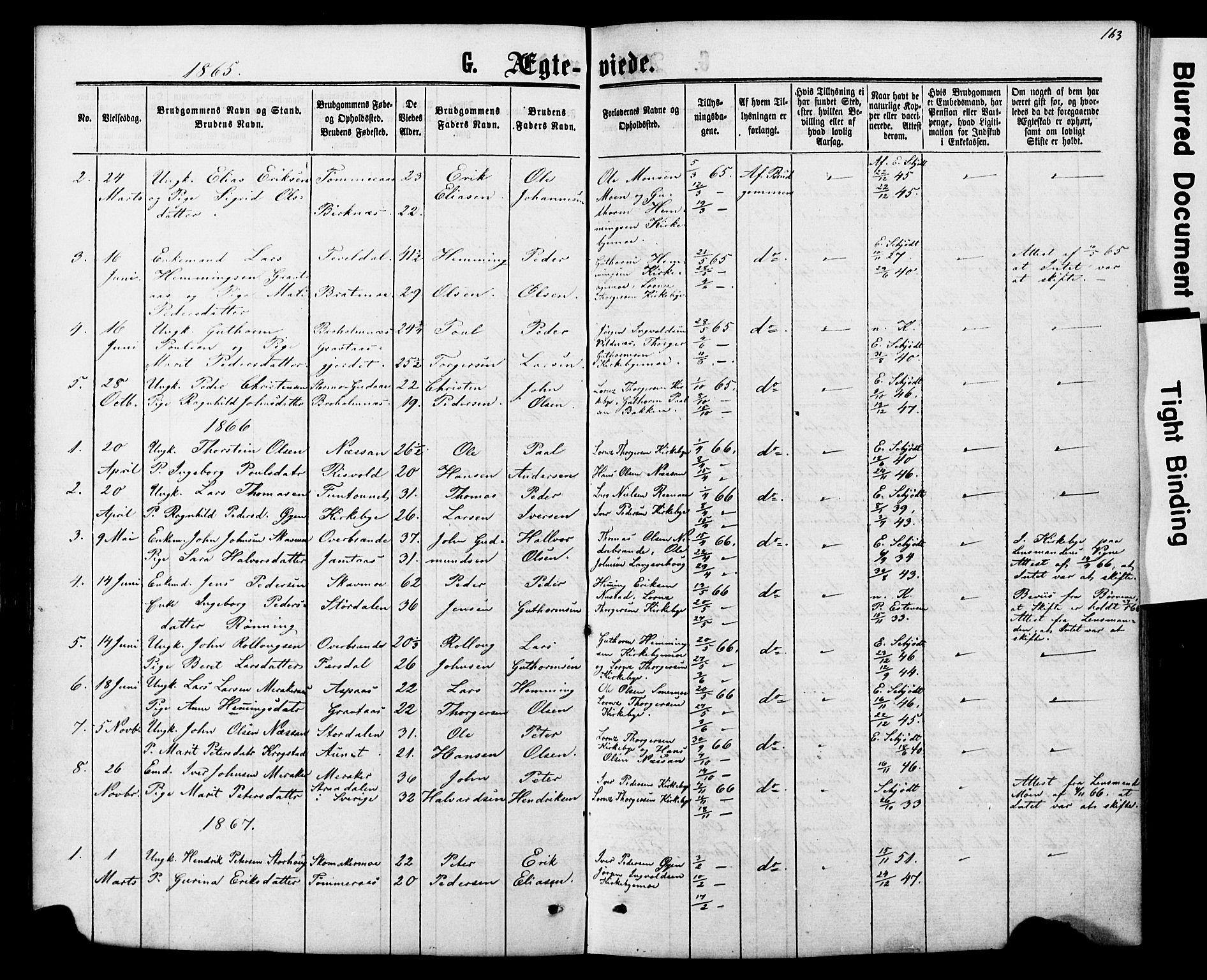 SAT, Ministerialprotokoller, klokkerbøker og fødselsregistre - Nord-Trøndelag, 706/L0049: Parish register (copy) no. 706C01, 1864-1895, p. 163