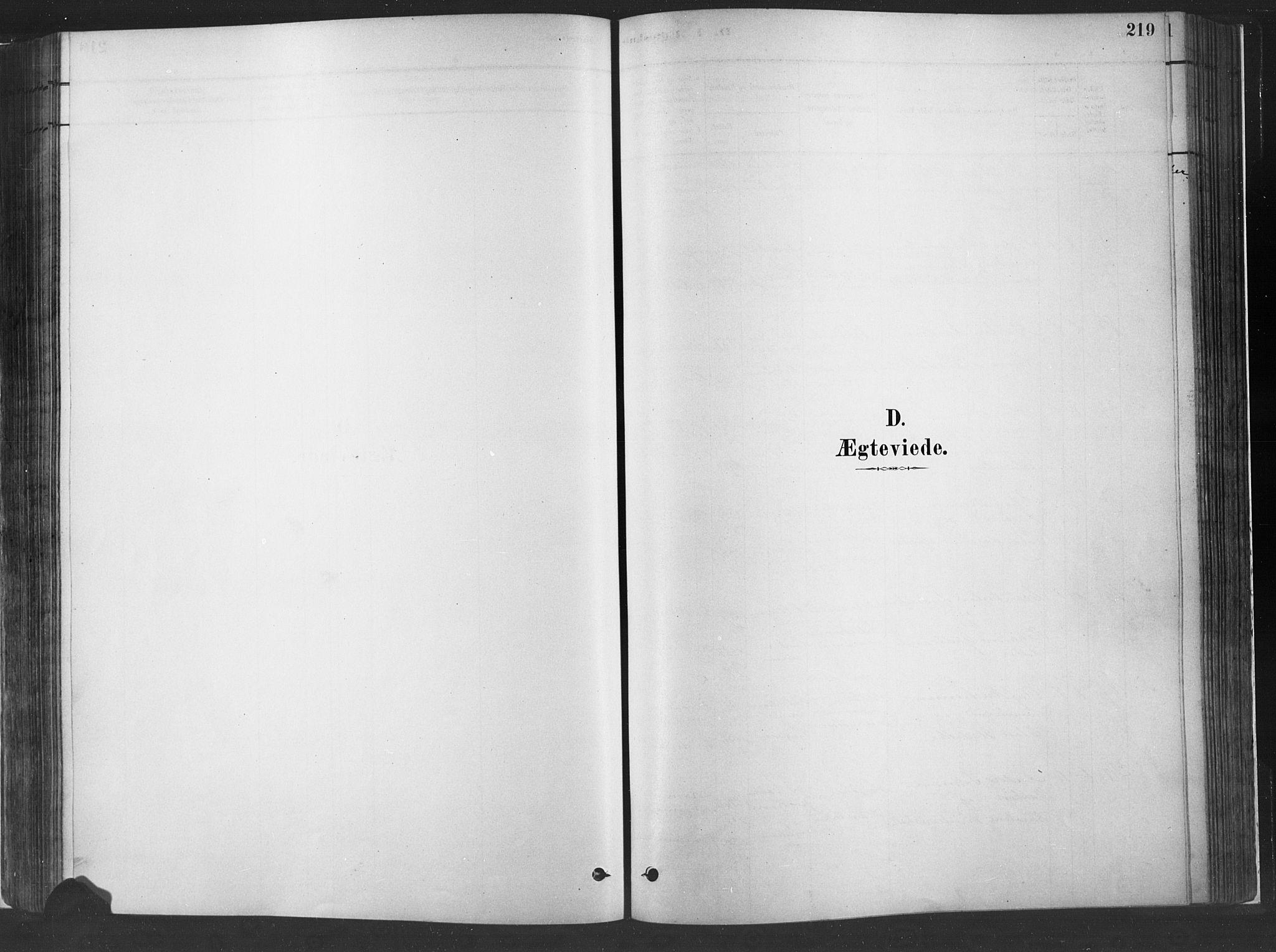 SAH, Fåberg prestekontor, H/Ha/Haa/L0010: Parish register (official) no. 10, 1879-1900, p. 219