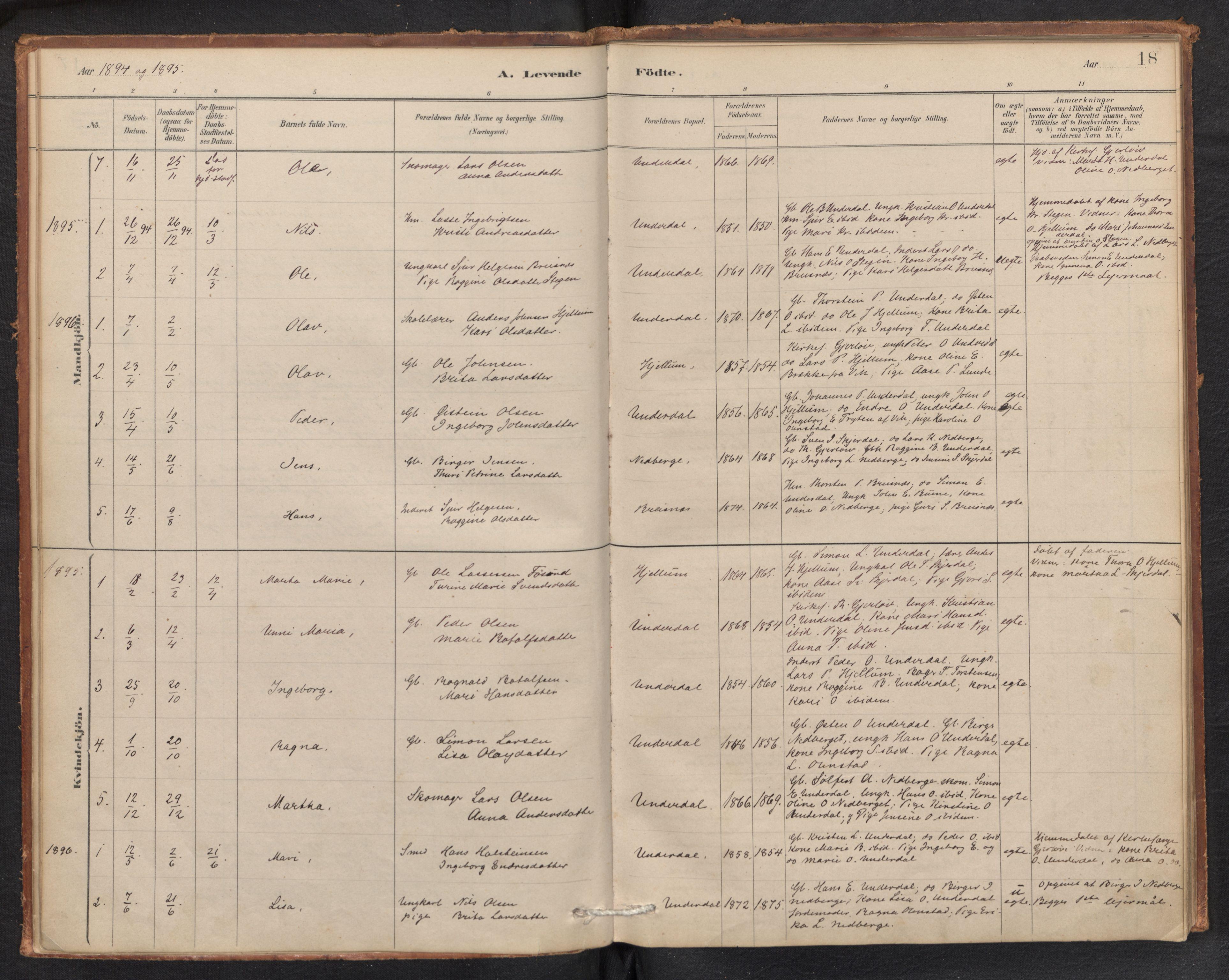SAB, Aurland Sokneprestembete*, Parish register (official) no. E 1, 1880-1907, p. 17b-18a