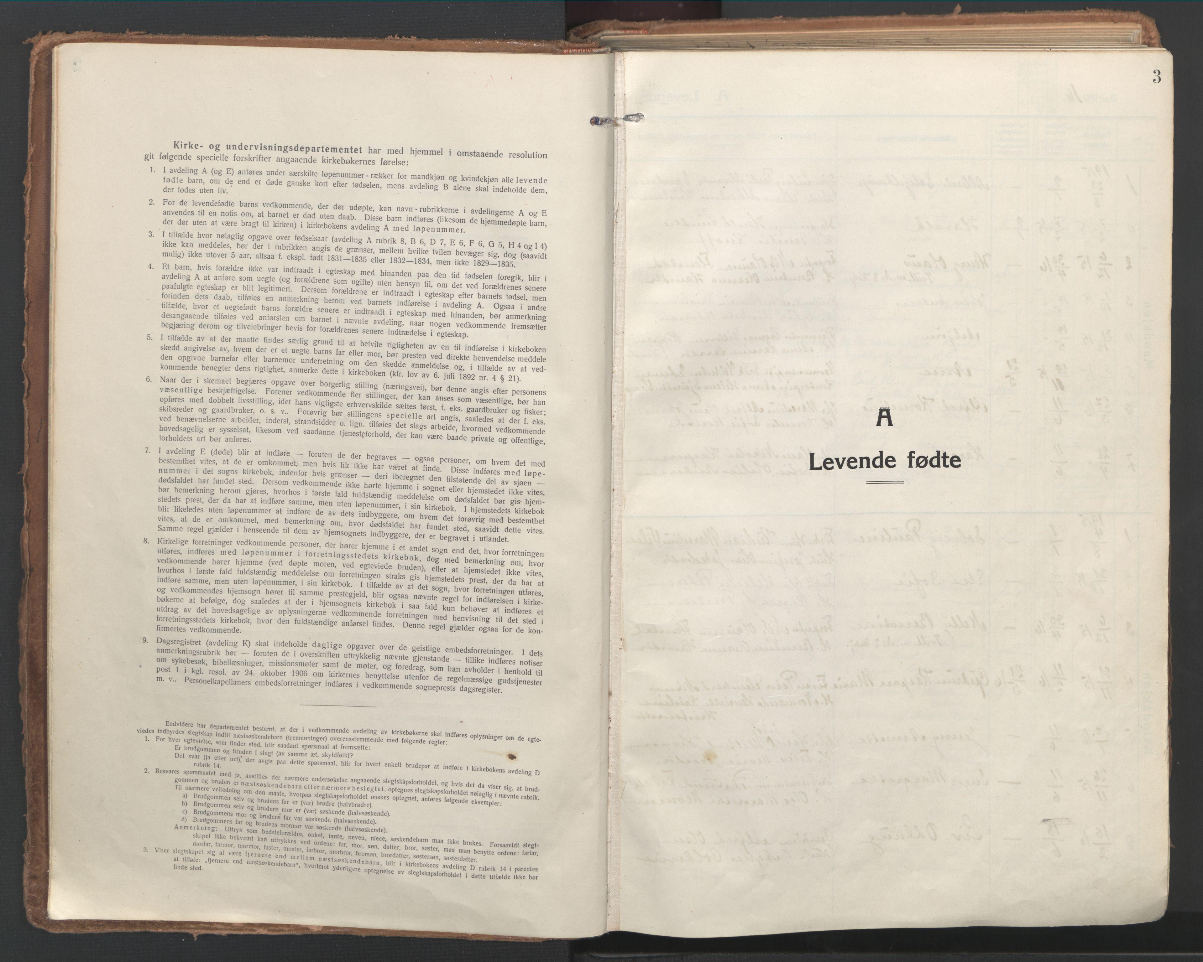 SAT, Ministerialprotokoller, klokkerbøker og fødselsregistre - Nordland, 802/L0060: Parish register (official) no. 802A07, 1916-1933, p. 3