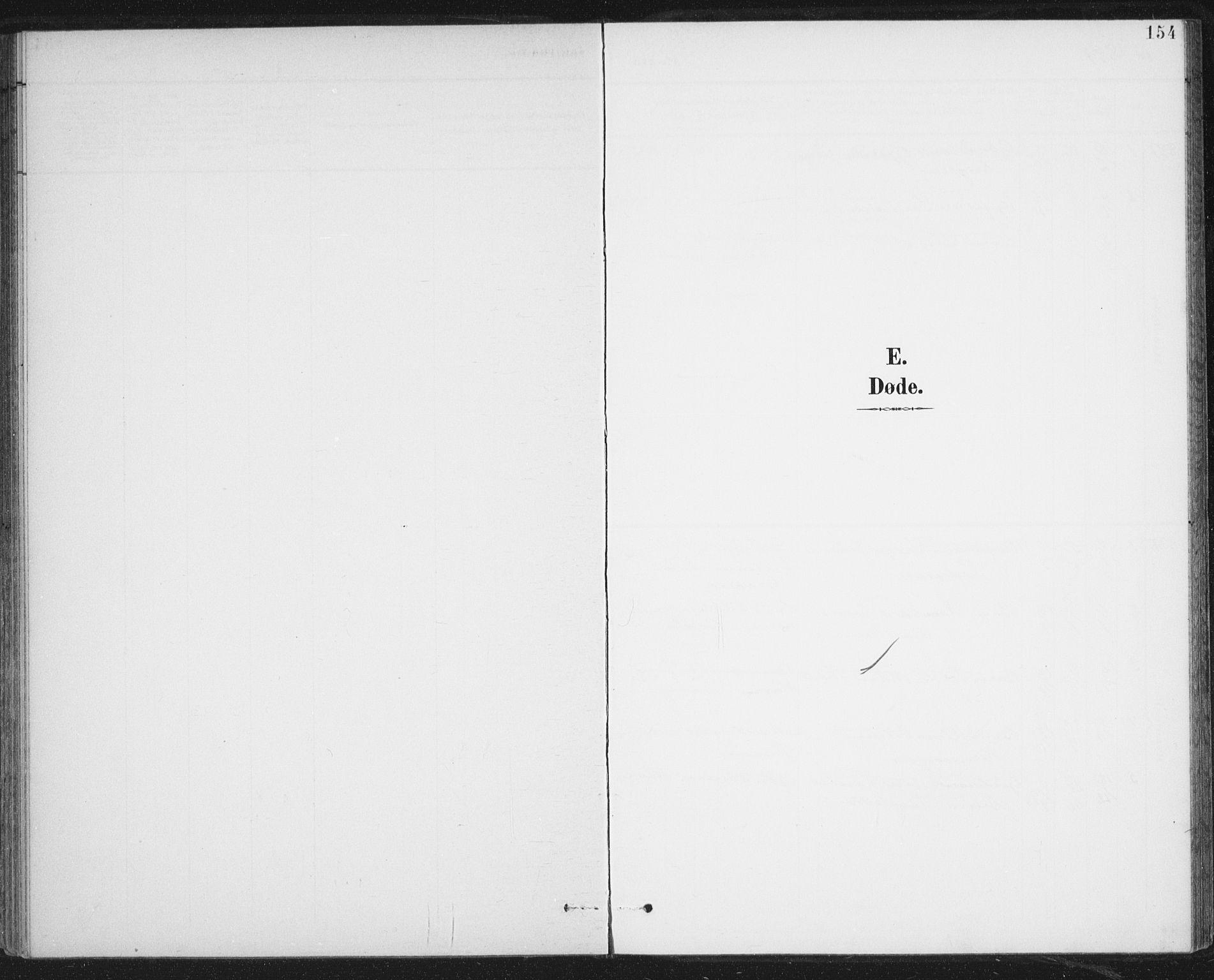 SAT, Ministerialprotokoller, klokkerbøker og fødselsregistre - Nordland, 899/L1437: Parish register (official) no. 899A05, 1897-1908, p. 154