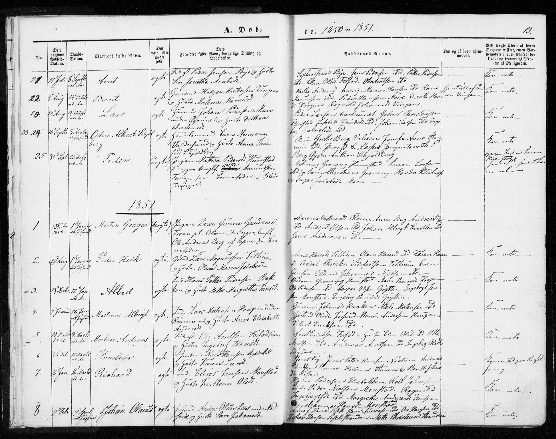 SAT, Ministerialprotokoller, klokkerbøker og fødselsregistre - Sør-Trøndelag, 655/L0677: Parish register (official) no. 655A06, 1847-1860, p. 13