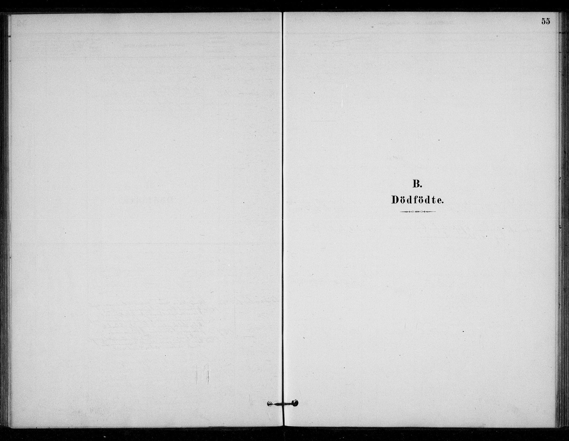 SAT, Ministerialprotokoller, klokkerbøker og fødselsregistre - Sør-Trøndelag, 670/L0836: Parish register (official) no. 670A01, 1879-1904, p. 55