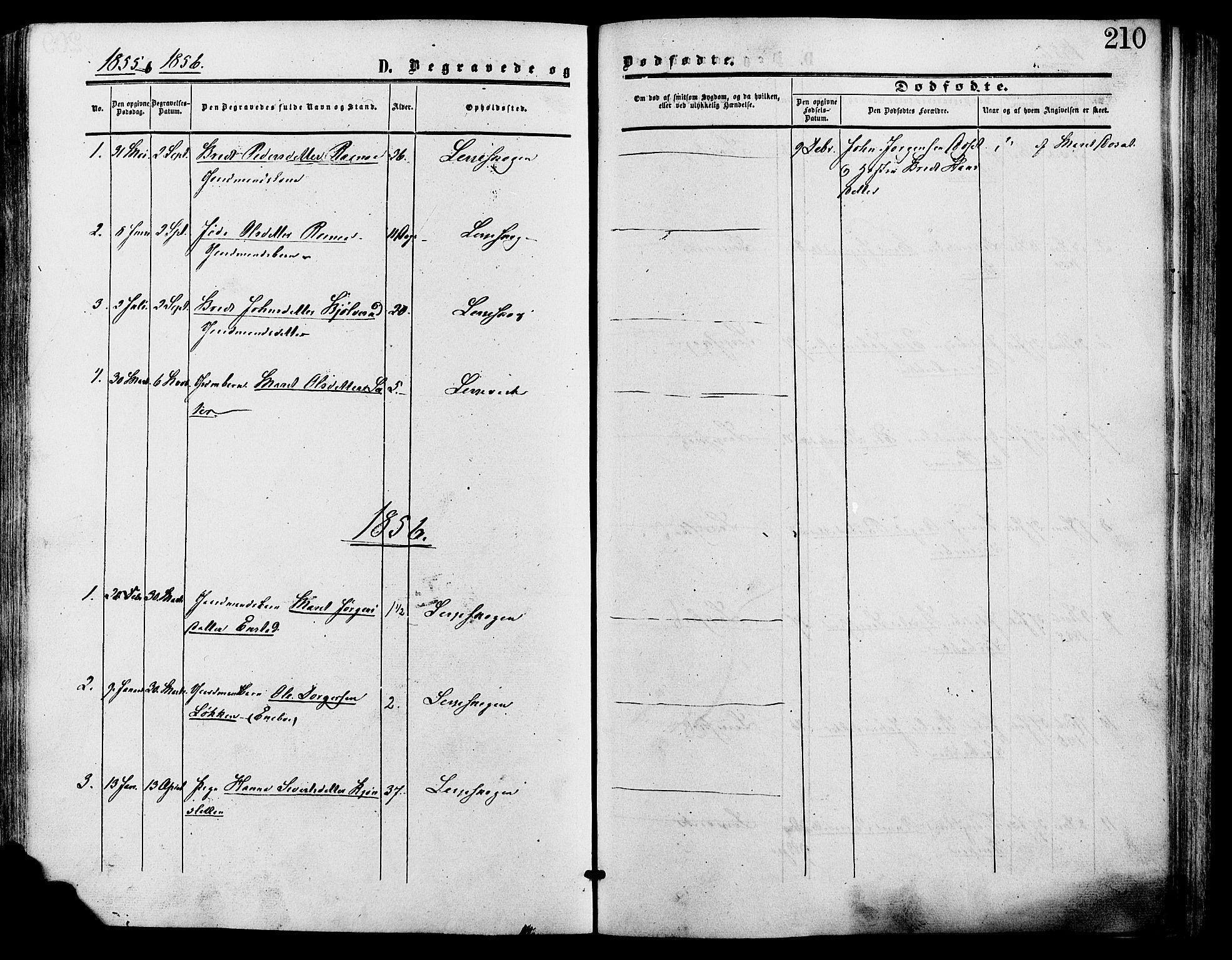 SAH, Lesja prestekontor, Parish register (official) no. 9, 1854-1889, p. 210