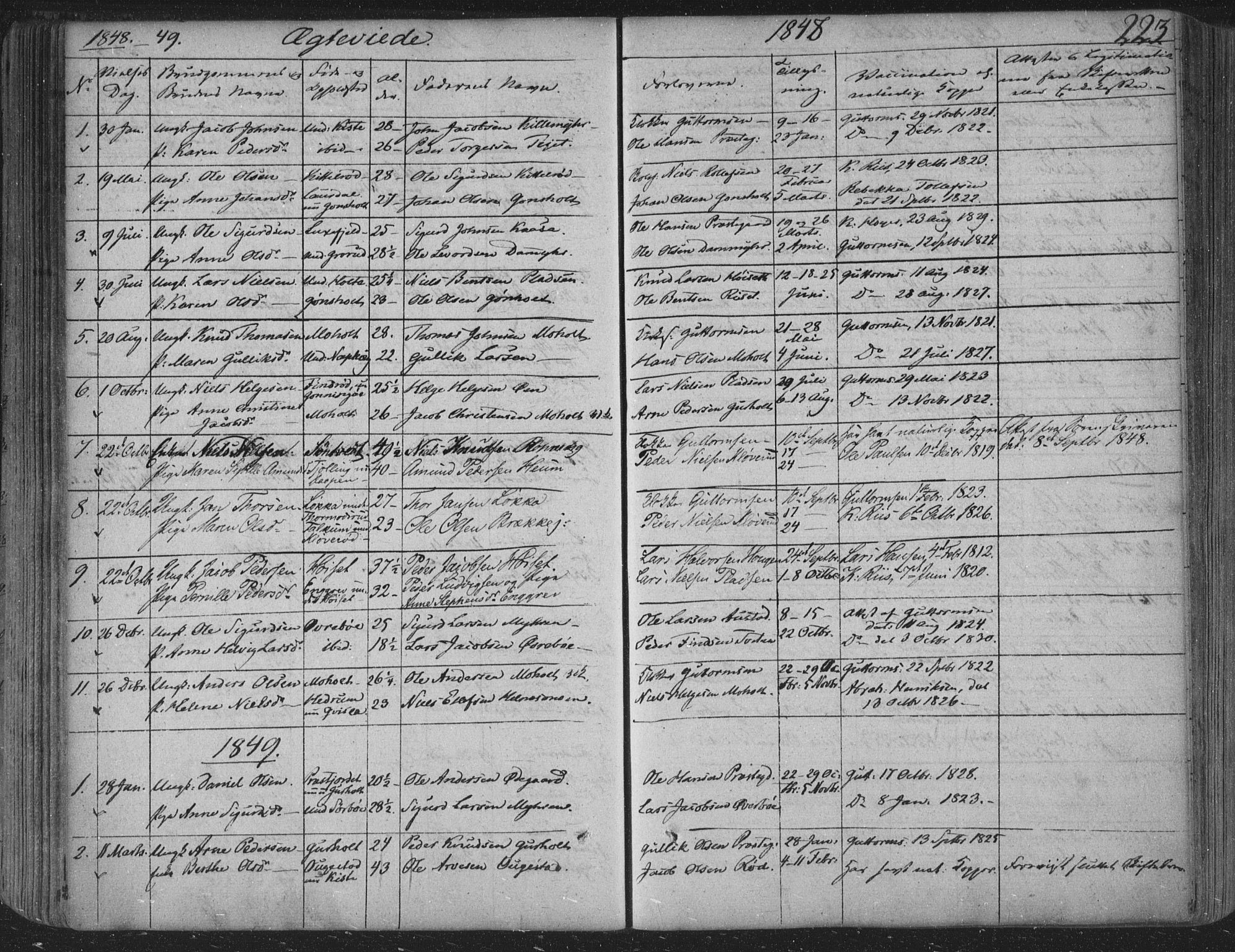 SAKO, Siljan kirkebøker, F/Fa/L0001: Parish register (official) no. 1, 1831-1870, p. 223