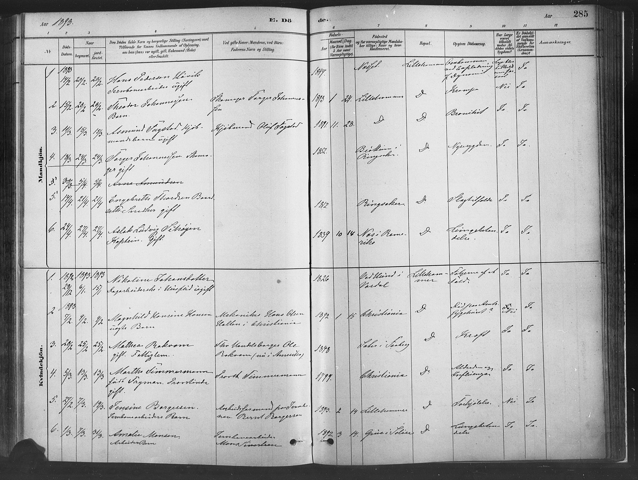 SAH, Fåberg prestekontor, H/Ha/Haa/L0010: Parish register (official) no. 10, 1879-1900, p. 285