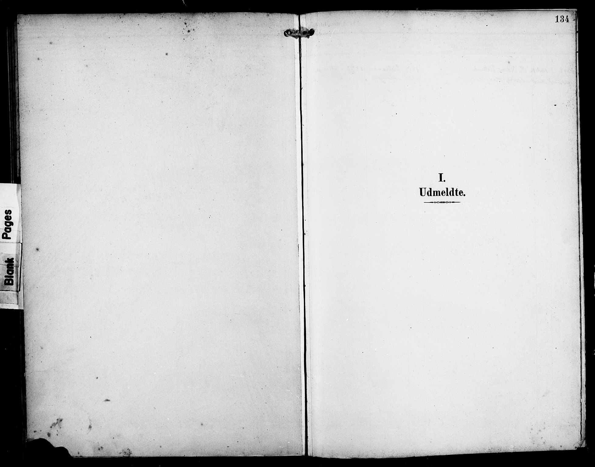 SAB, Manger sokneprestembete, H/Haa: Parish register (official) no. B 2, 1893-1906, p. 134