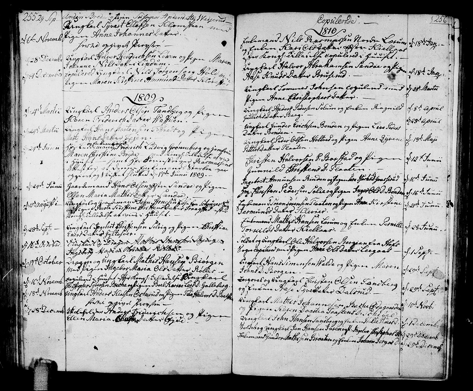 SAKO, Sande Kirkebøker, F/Fa/L0002: Parish register (official) no. 2, 1804-1814, p. 255-256