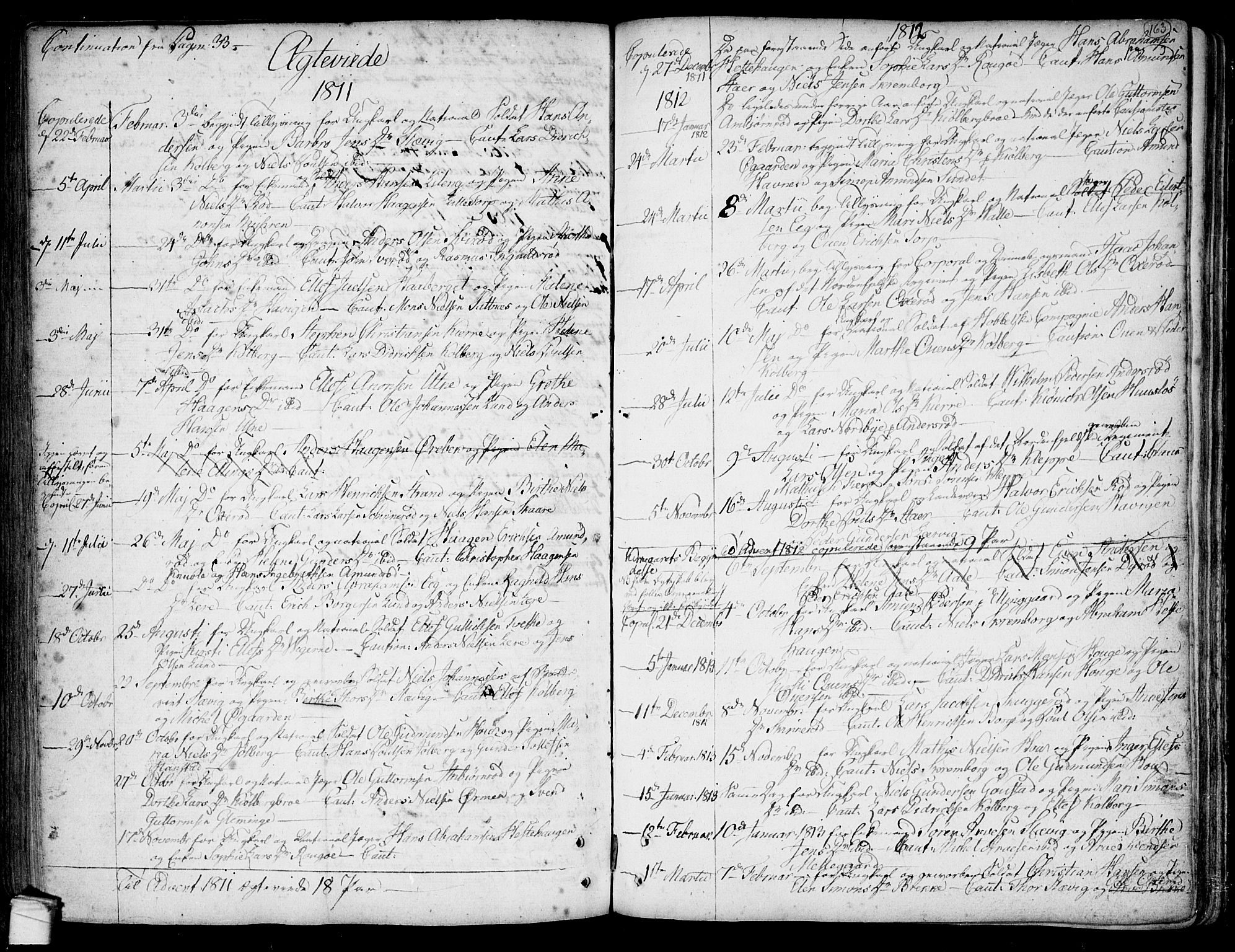 SAO, Onsøy prestekontor Kirkebøker, F/Fa/L0001: Parish register (official) no. I 1, 1733-1814, p. 163
