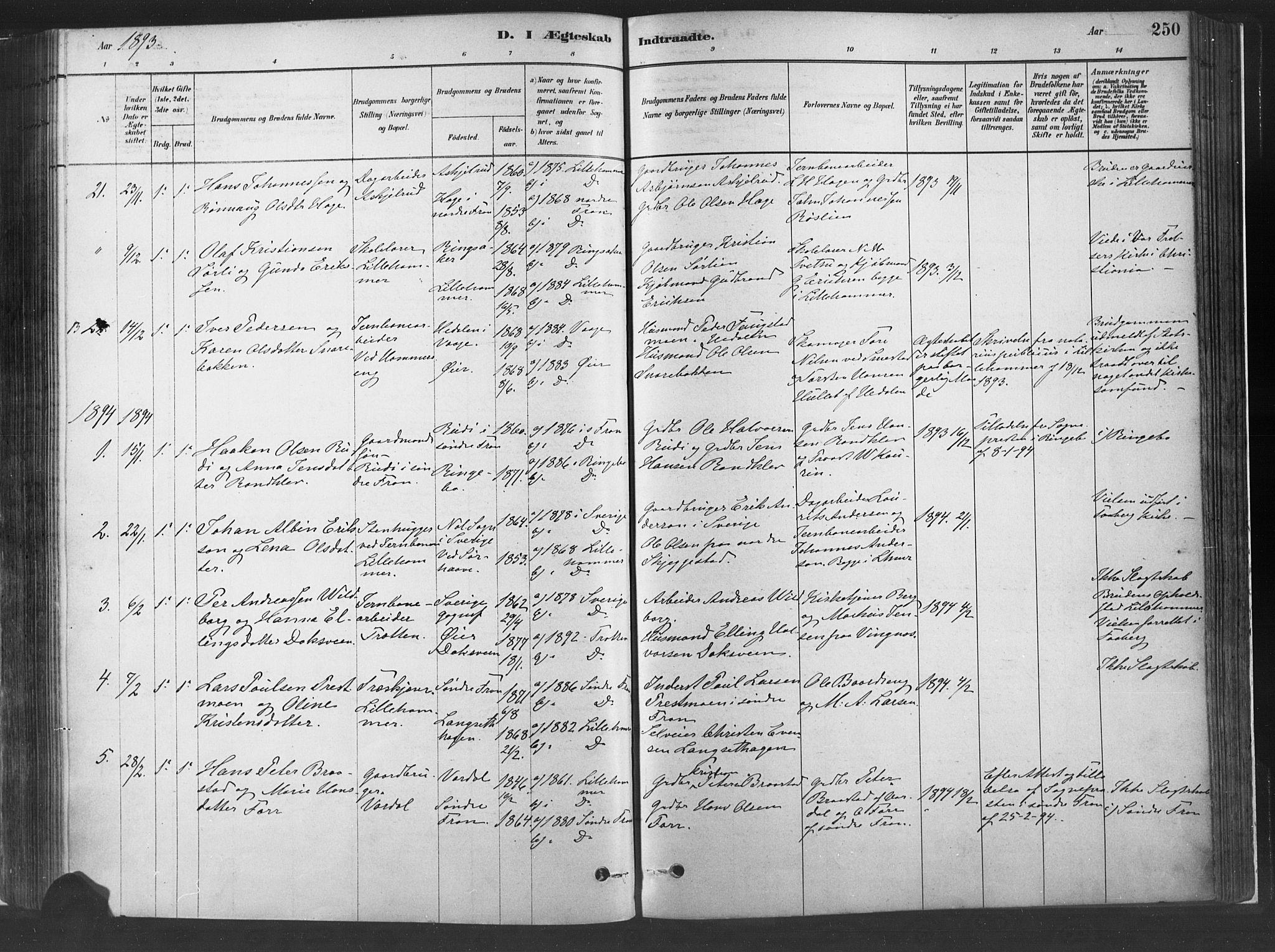 SAH, Fåberg prestekontor, H/Ha/Haa/L0010: Parish register (official) no. 10, 1879-1900, p. 250