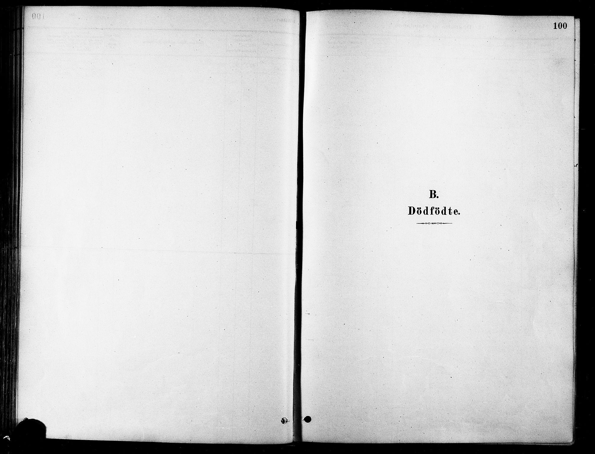SATØ, Karlsøy sokneprestembete, H/Ha/Haa/L0006kirke: Parish register (official) no. 6, 1879-1890, p. 100