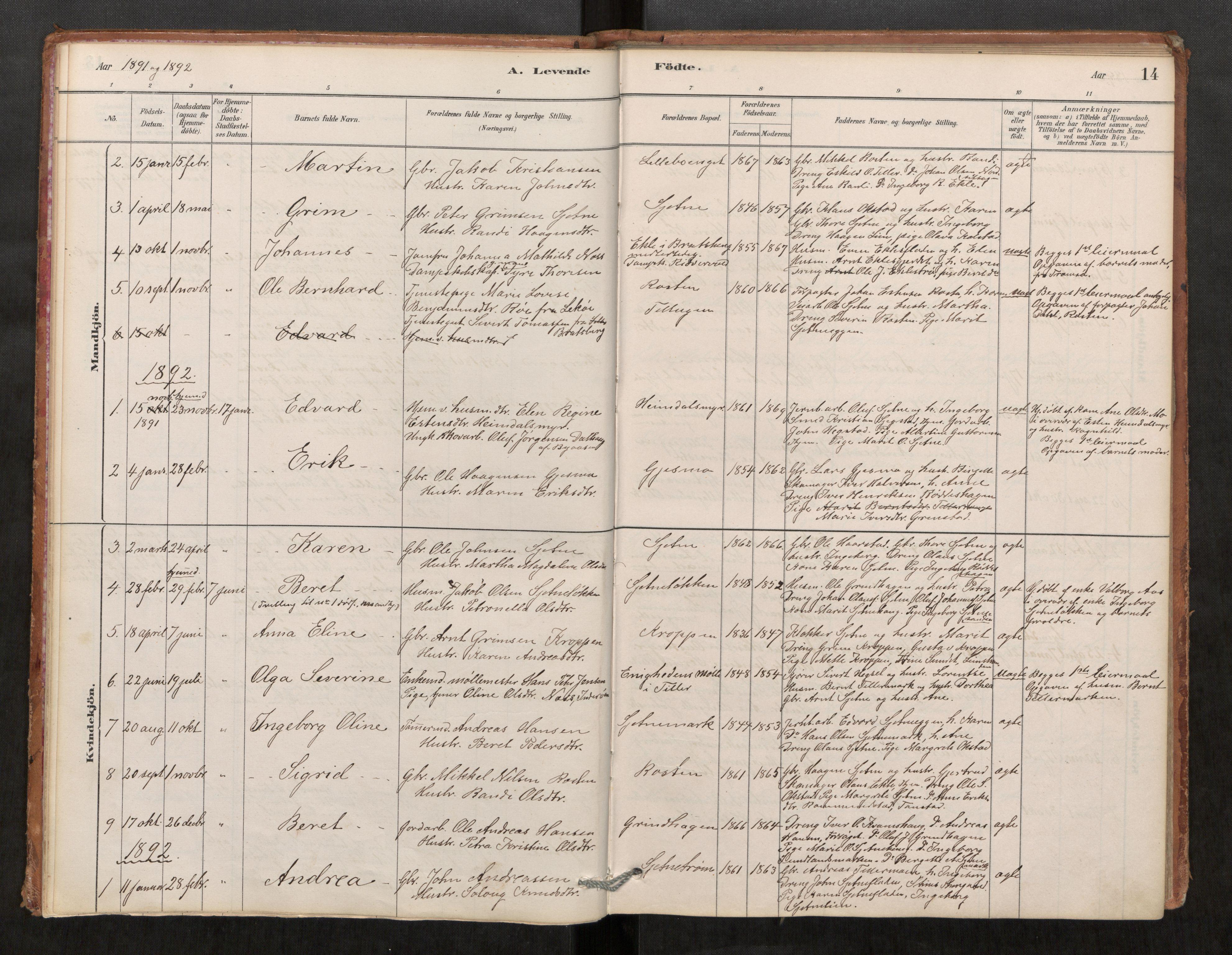 SAT, Klæbu sokneprestkontor, Parish register (official) no. 1, 1880-1900, p. 14