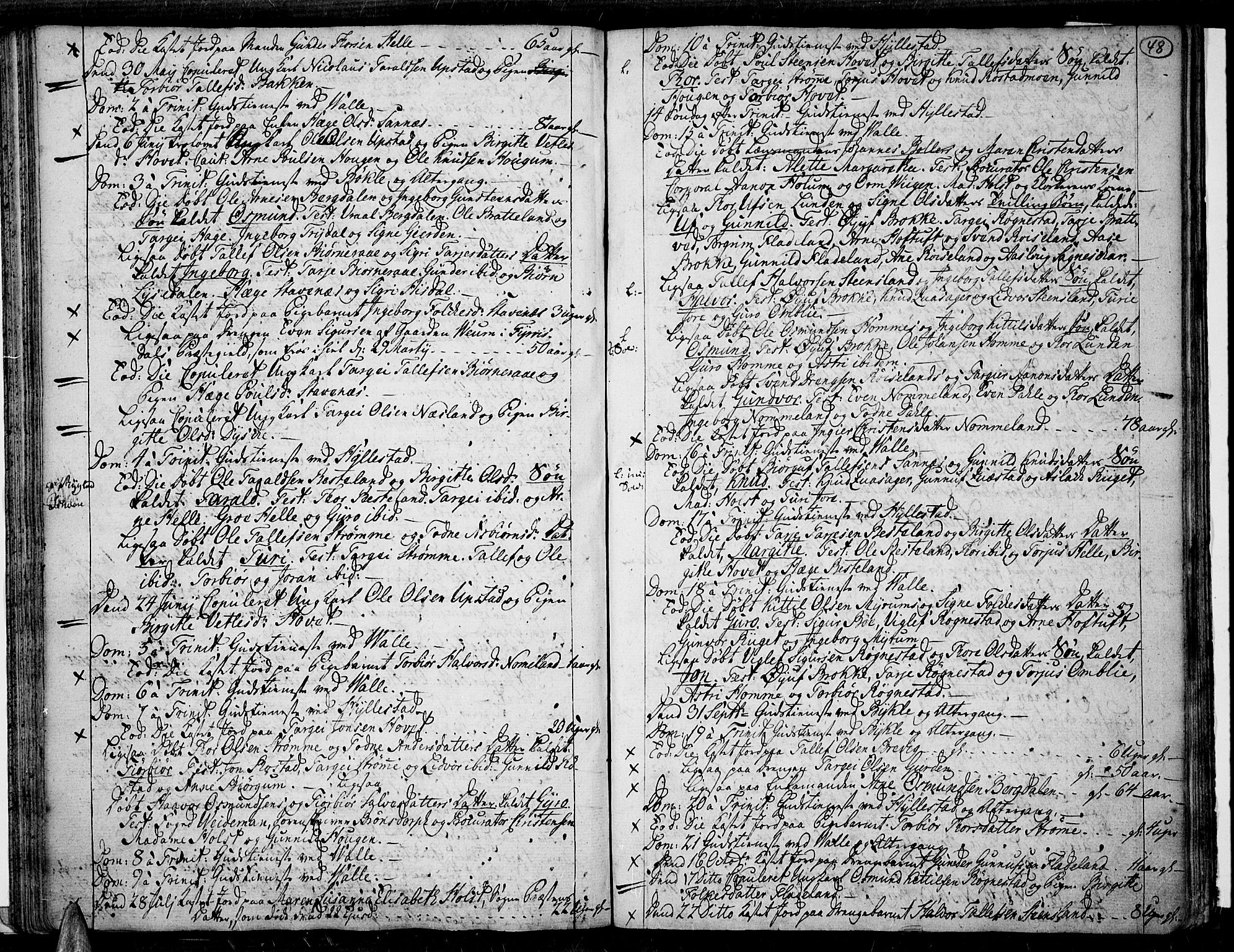 SAK, Valle sokneprestkontor, F/Fa/Fac/L0003: Parish register (official) no. A 3, 1776-1790, p. 48