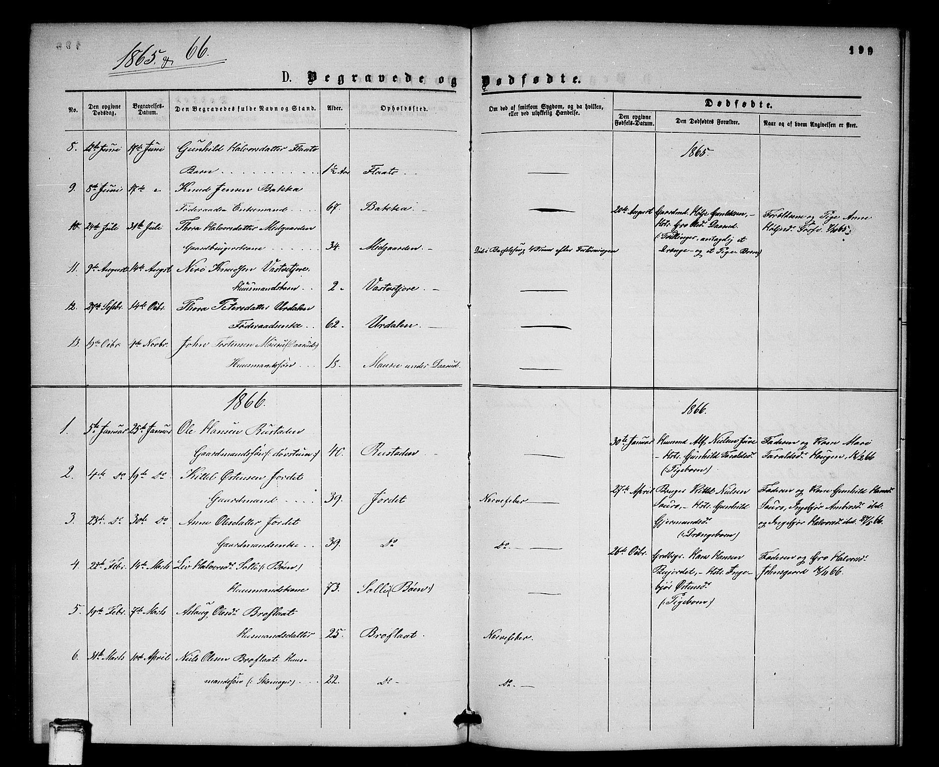 SAKO, Gransherad kirkebøker, G/Gb/L0002: Parish register (copy) no. II 2, 1860-1886, p. 199