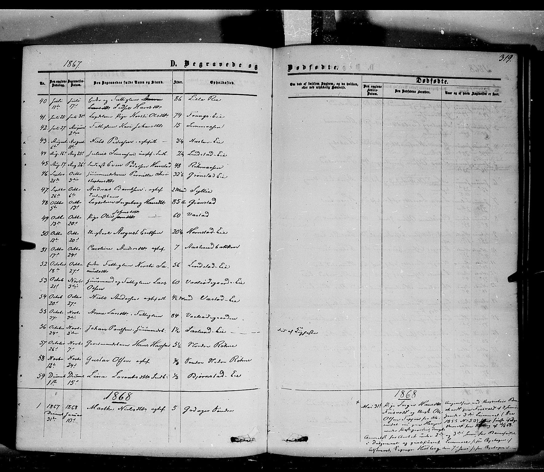 SAH, Stange prestekontor, K/L0013: Parish register (official) no. 13, 1862-1879, p. 319