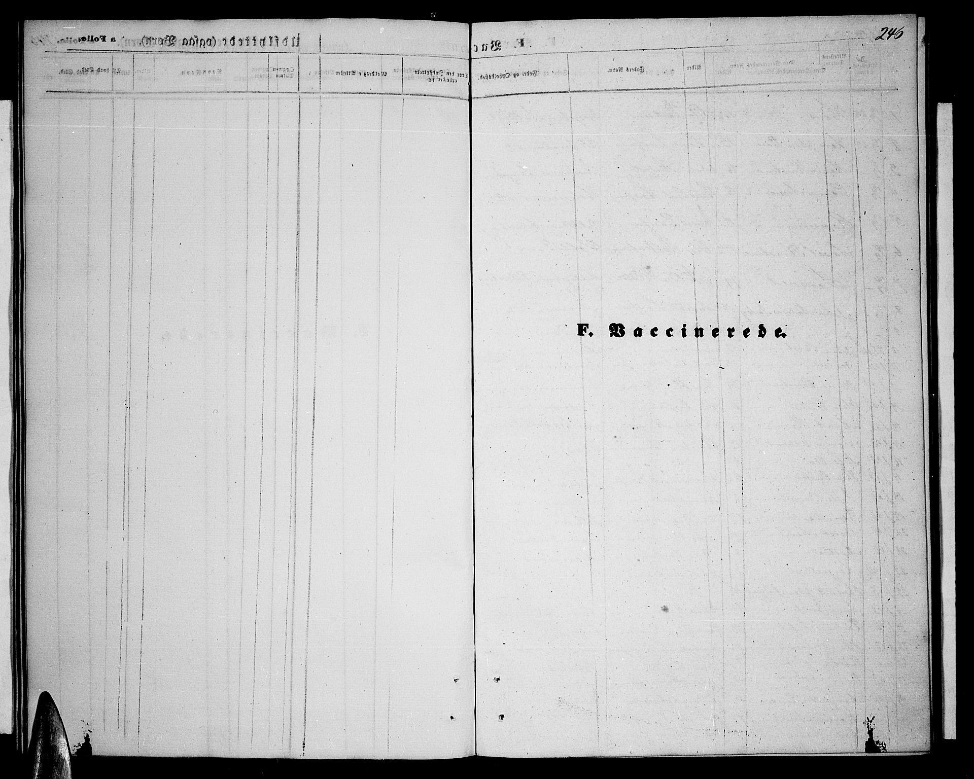 SATØ, Balsfjord sokneprestembete, Parish register (copy) no. 6, 1863-1878, p. 246