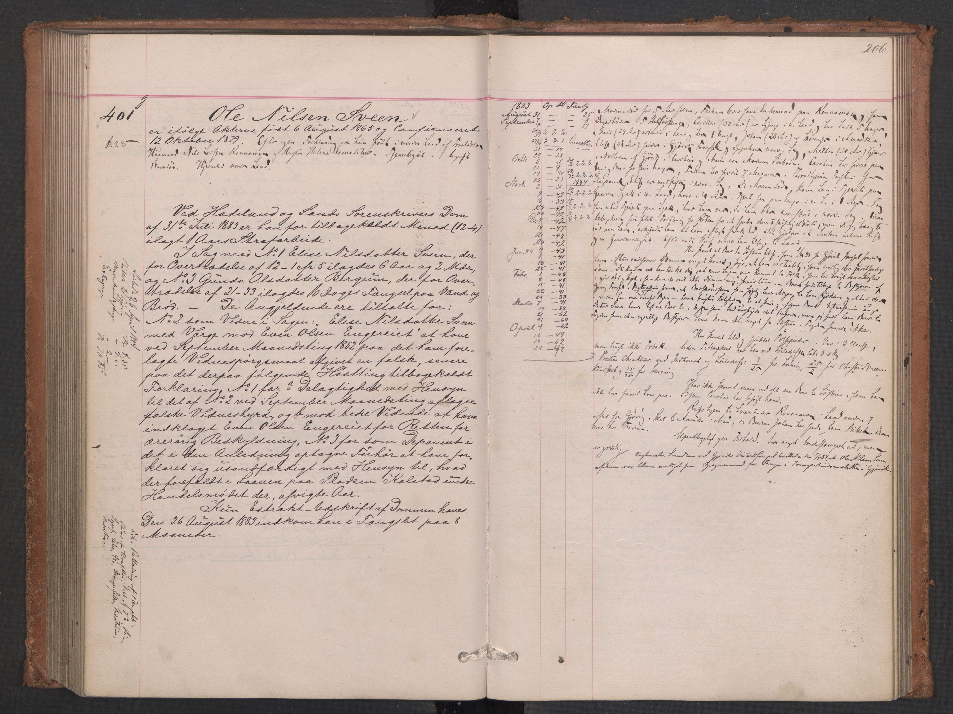 RA, Botsfengslet, D/Db/Dbb/L0021: 196g - 484g, 1882-1884, p. 206