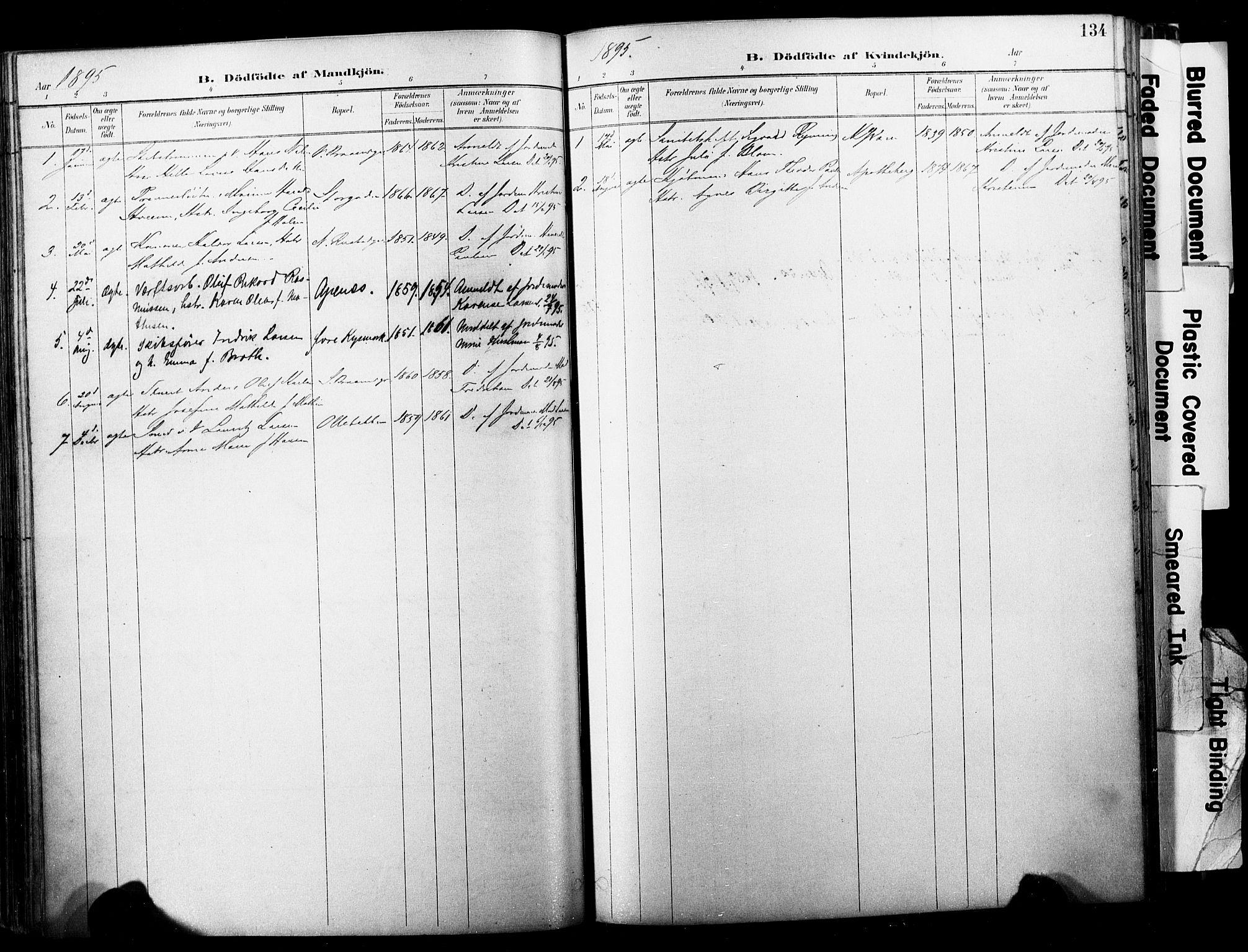 SAKO, Horten kirkebøker, F/Fa/L0004: Parish register (official) no. 4, 1888-1895, p. 134