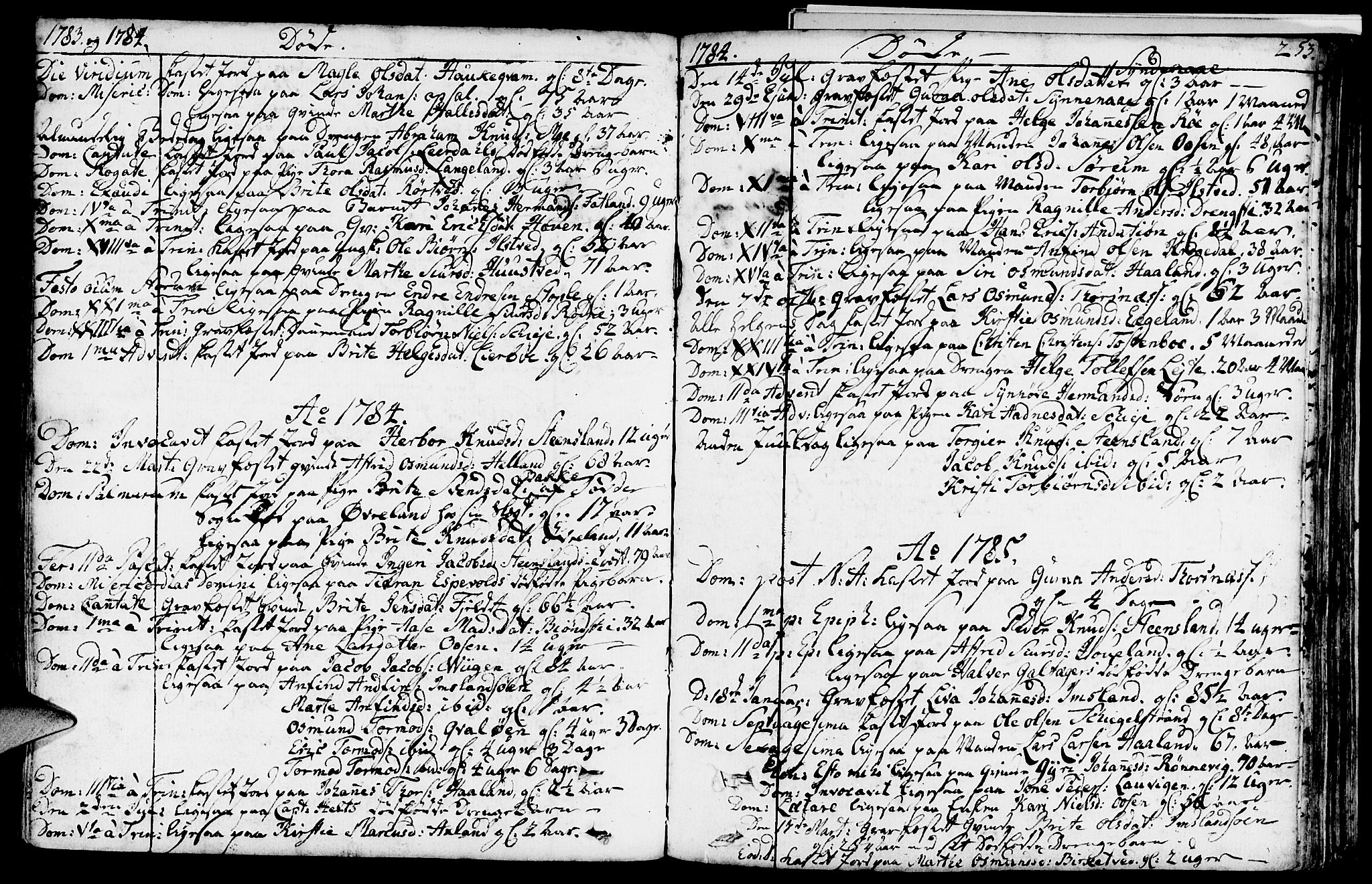SAST, Vikedal sokneprestkontor, IV: Parish register (official) no. A 2, 1779-1817, p. 253