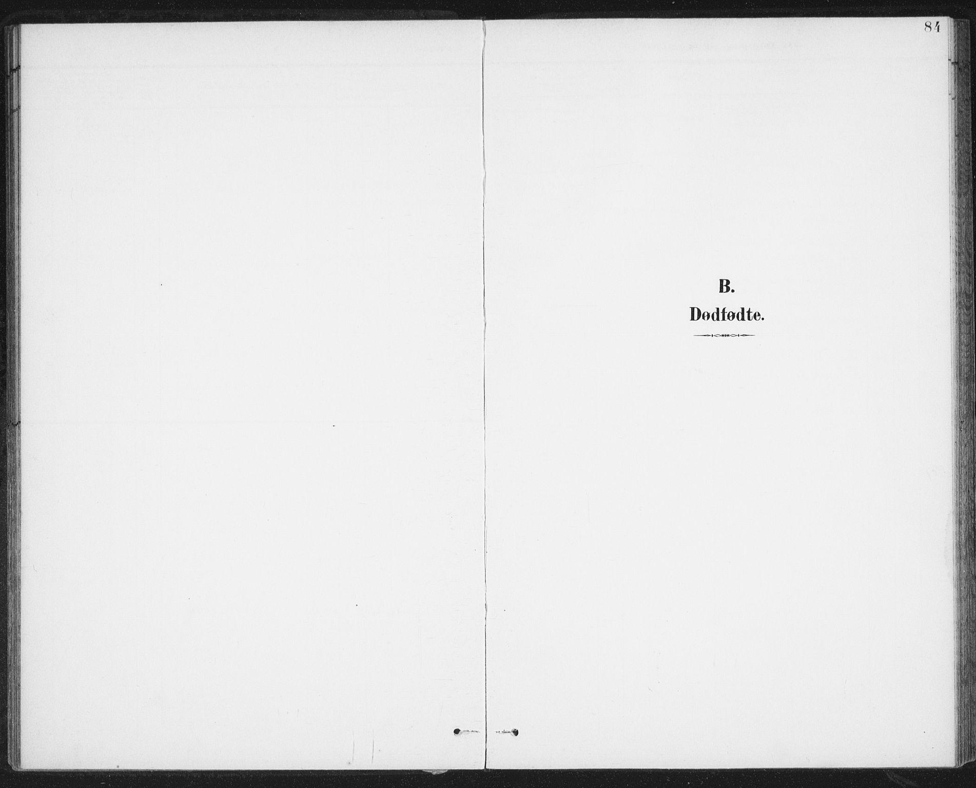 SAT, Ministerialprotokoller, klokkerbøker og fødselsregistre - Nordland, 899/L1437: Parish register (official) no. 899A05, 1897-1908, p. 84
