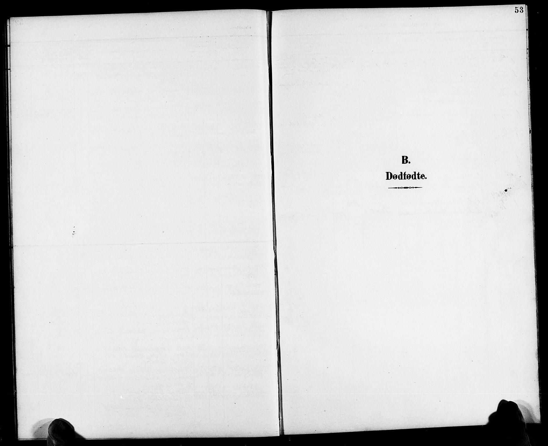 SAK, Herefoss sokneprestkontor, F/Fb/Fbb/L0003: Parish register (copy) no. B 3, 1892-1917, p. 53