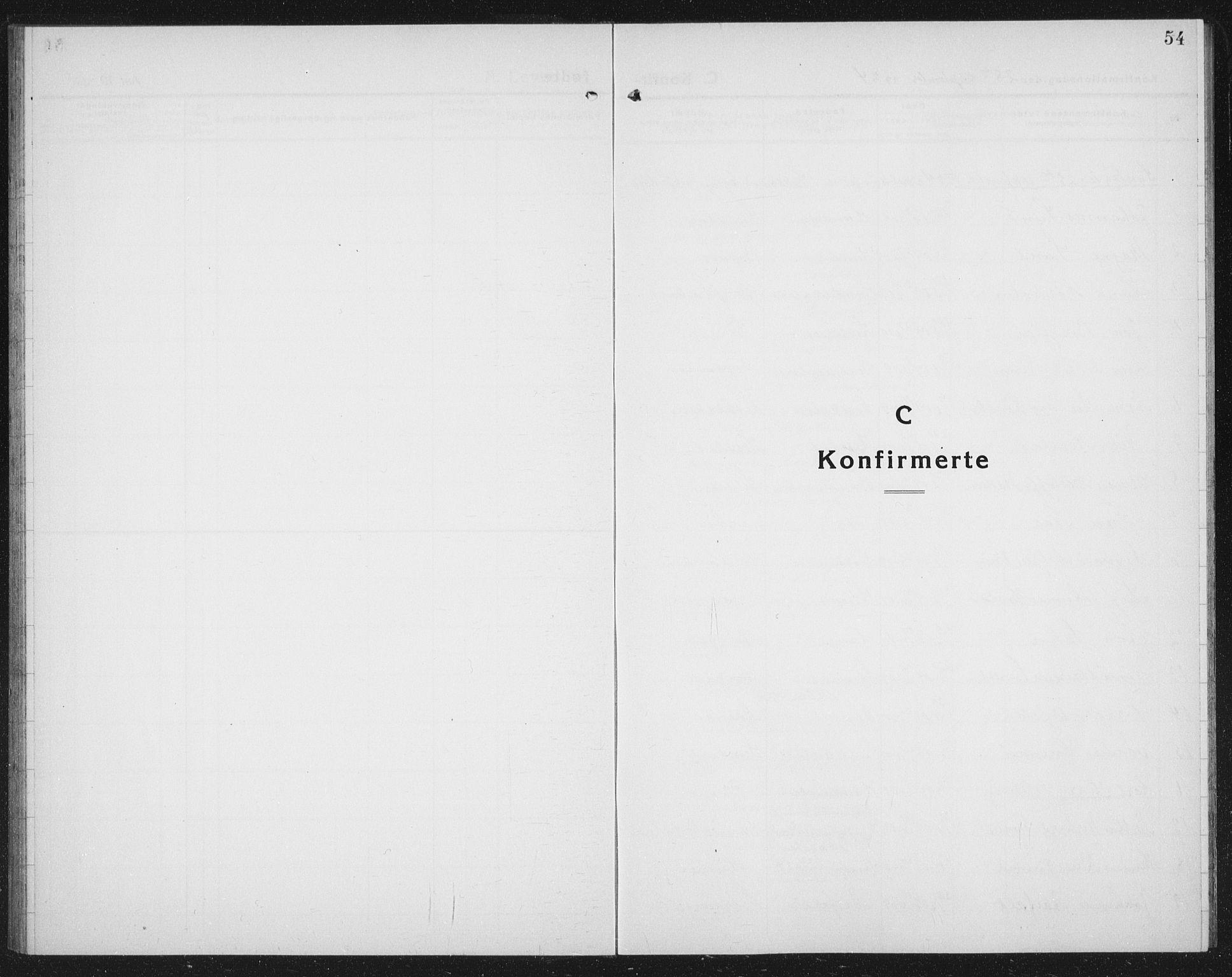 SAT, Ministerialprotokoller, klokkerbøker og fødselsregistre - Nord-Trøndelag, 730/L0303: Parish register (copy) no. 730C06, 1924-1933, p. 54