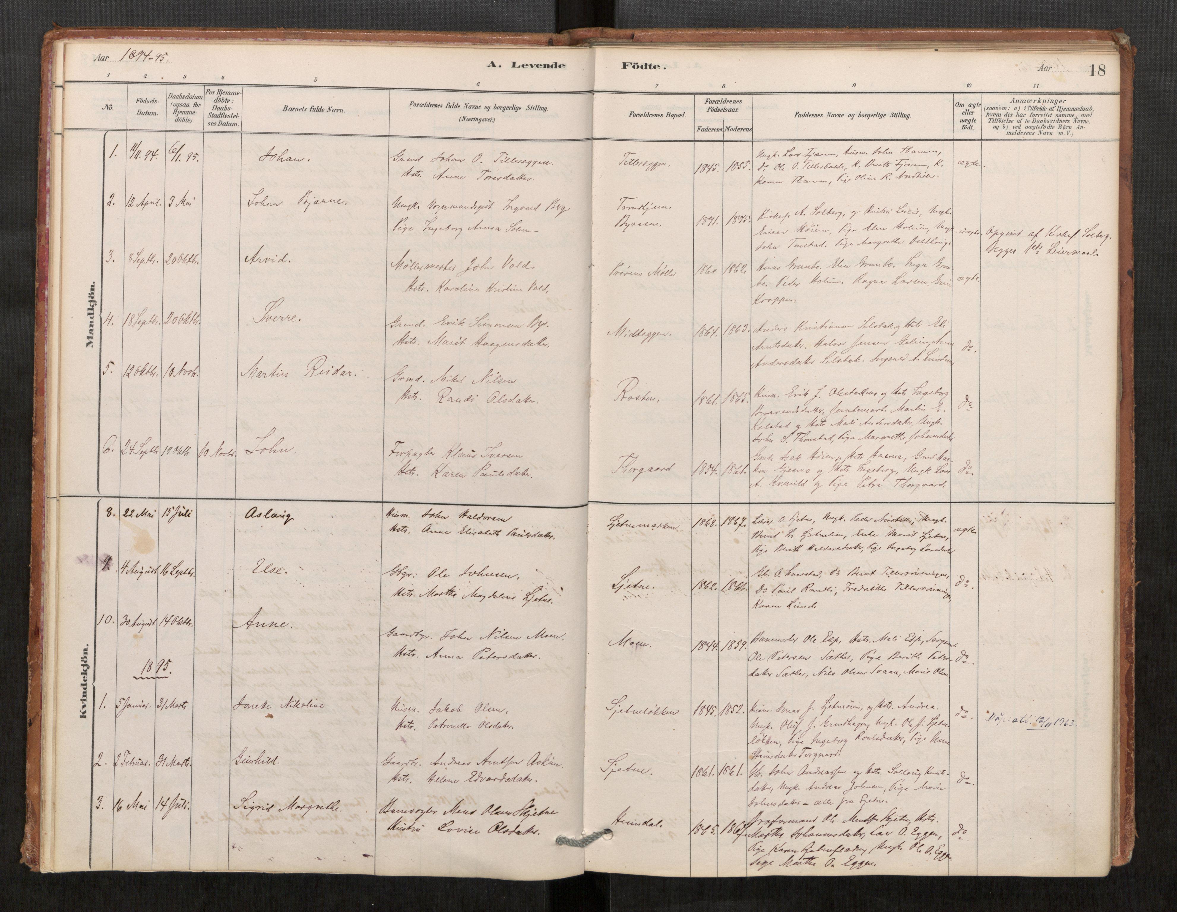 SAT, Klæbu sokneprestkontor, Parish register (official) no. 1, 1880-1900, p. 18